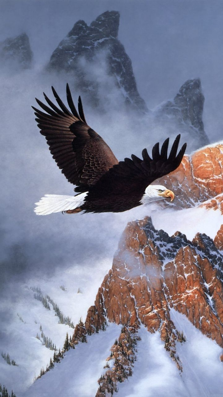 American Eagle Wallpapers - Top Free American Eagle ...