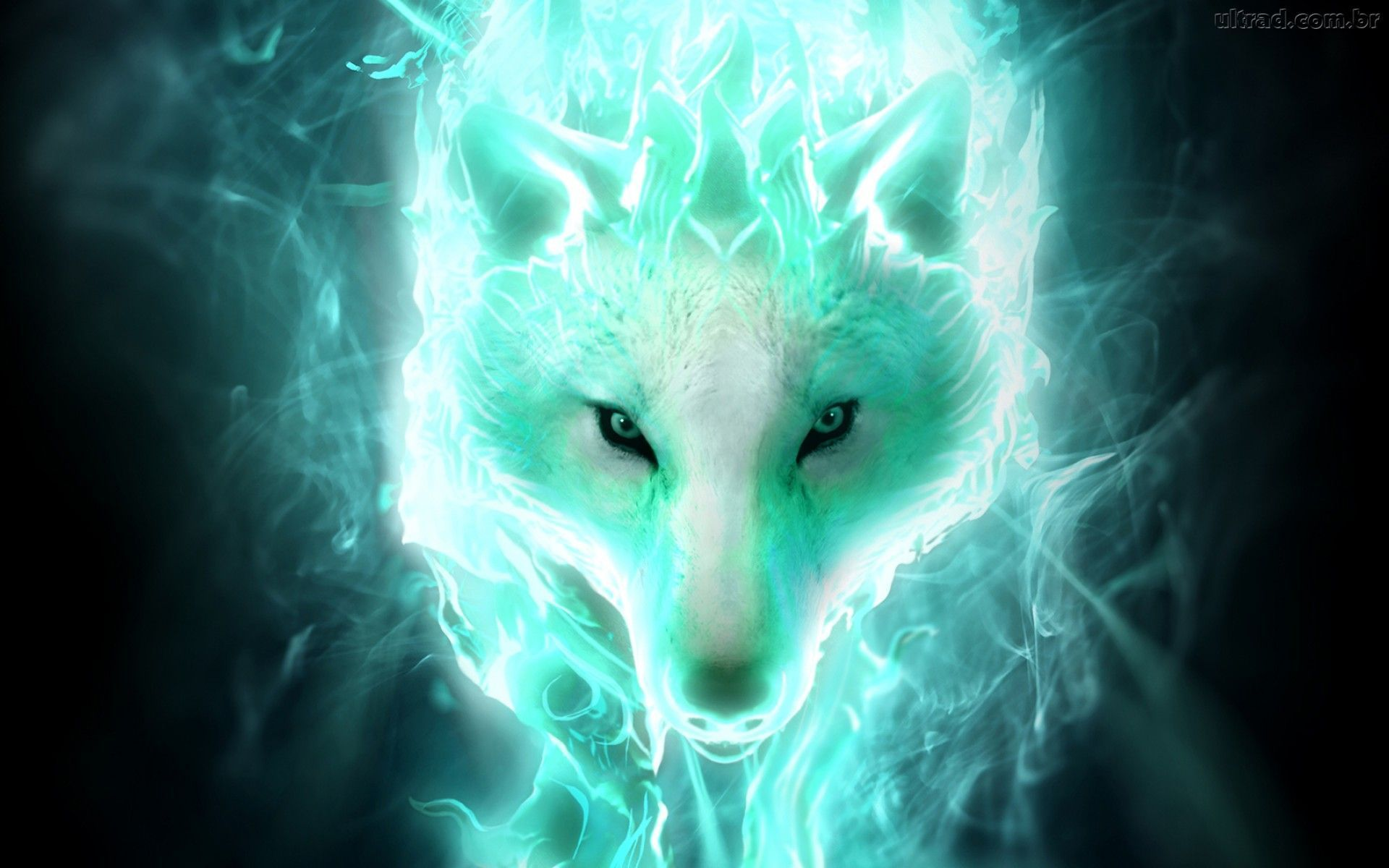 Blue Spirit Wolf Wallpapers Top Free Blue Spirit Wolf Backgrounds Wallpaperaccess