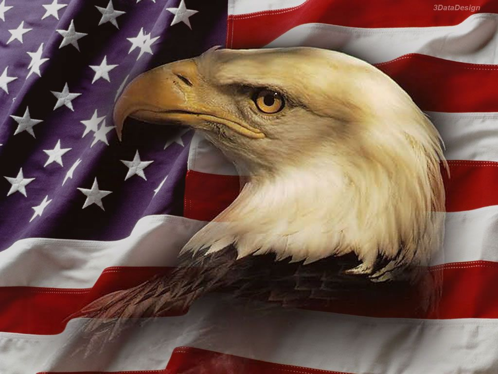 Us Eagle Flag Wallpapers Top Free Us Eagle Flag Backgrounds