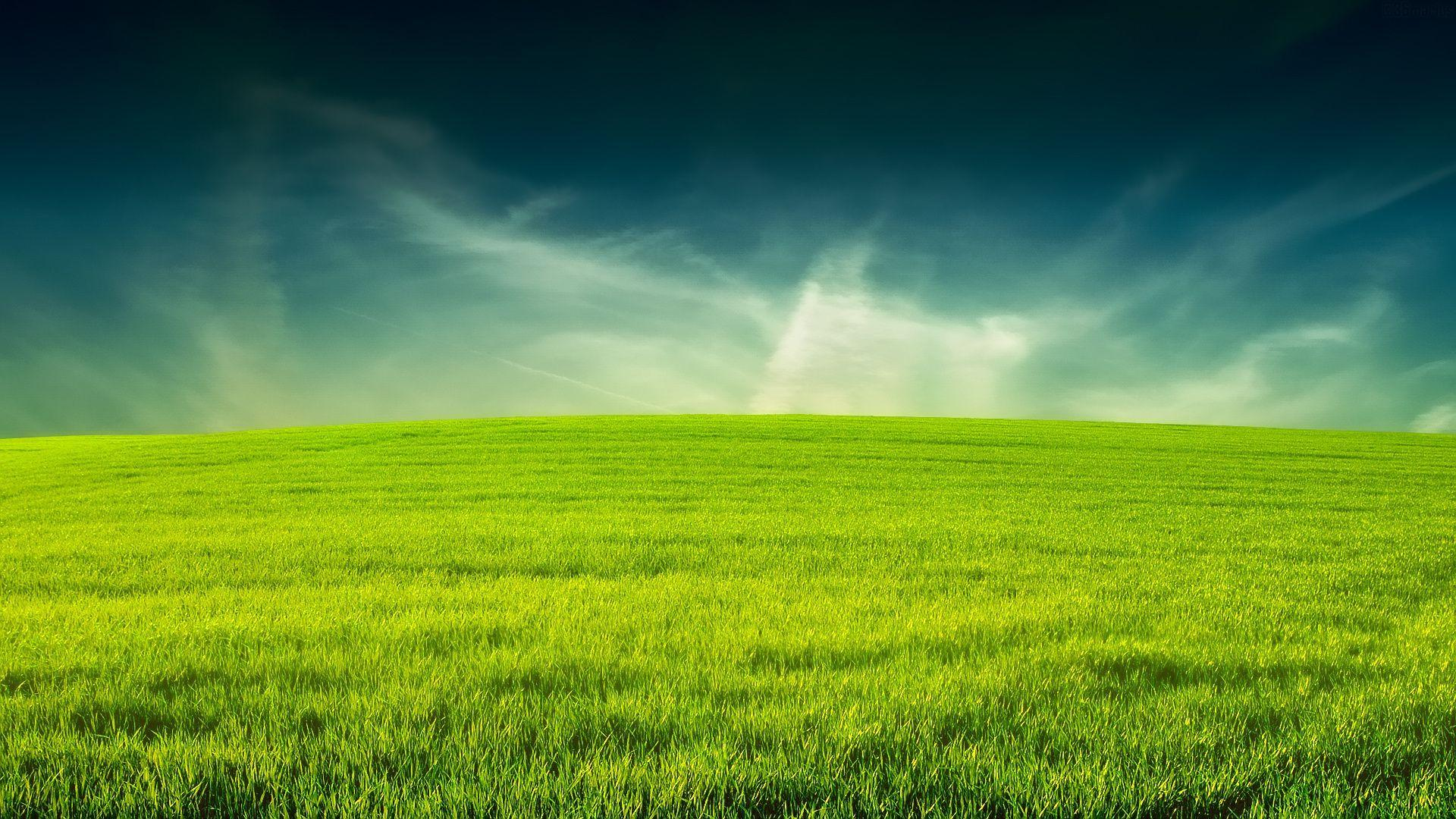 Lawn Wallpapers Top Free Lawn Backgrounds Wallpaperaccess