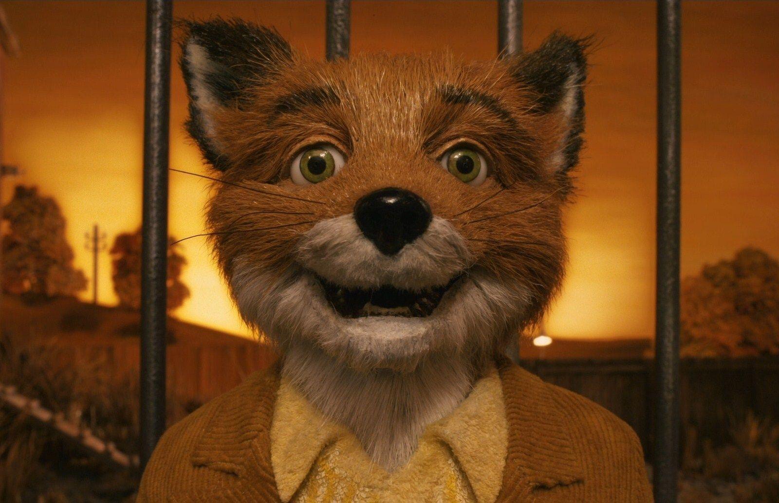 Fantastic Mr Fox Wallpapers Top Free Fantastic Mr Fox Backgrounds Wallpaperaccess