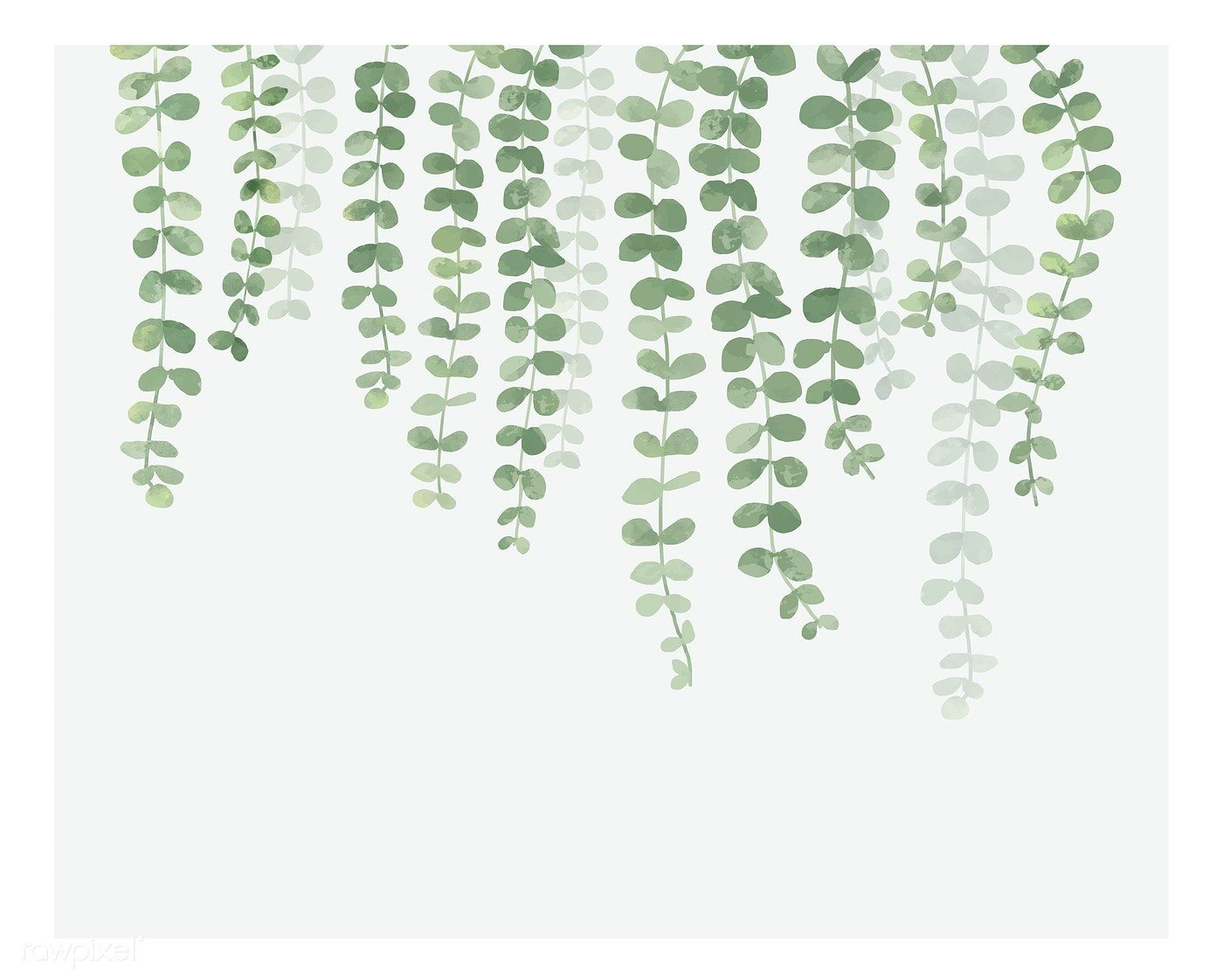 Hanging Plants Wallpapers Top Free Hanging Plants Backgrounds Wallpaperaccess