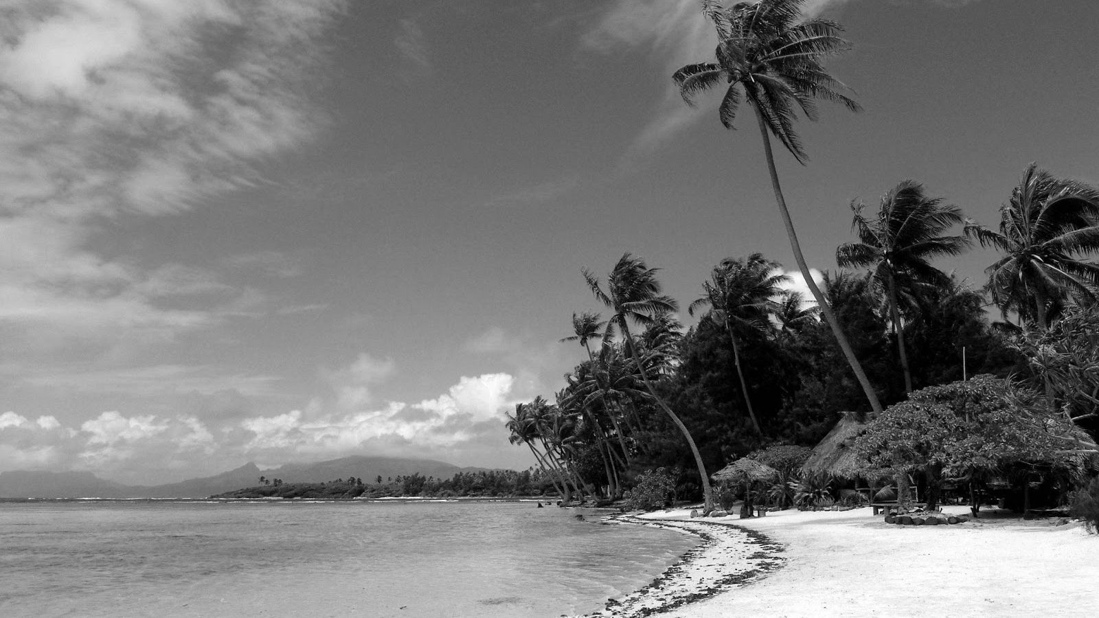 Black And White Beach Wallpapers Top Free Black And White Beach Backgrounds Wallpaperaccess