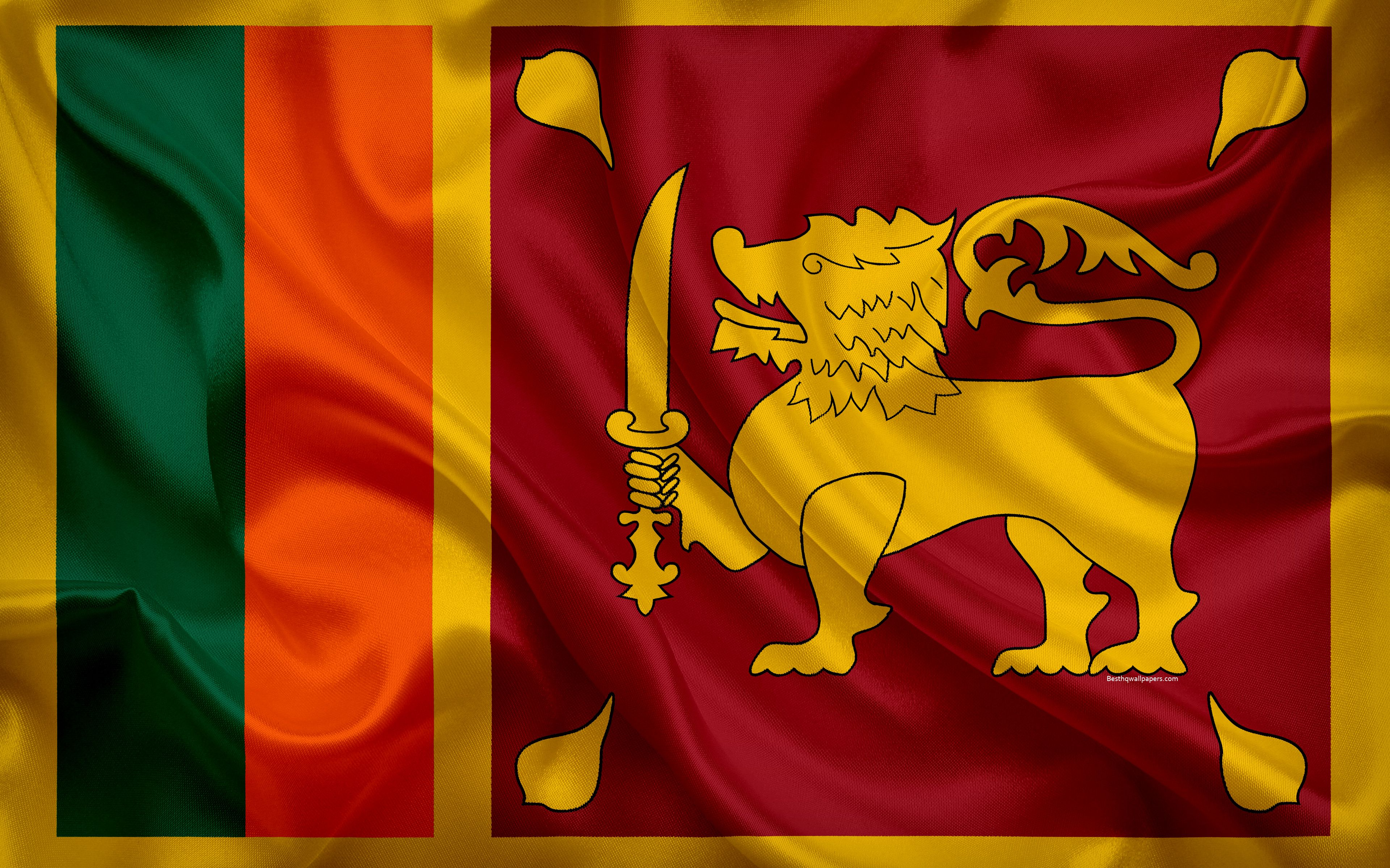 Image result for sri lankan flag