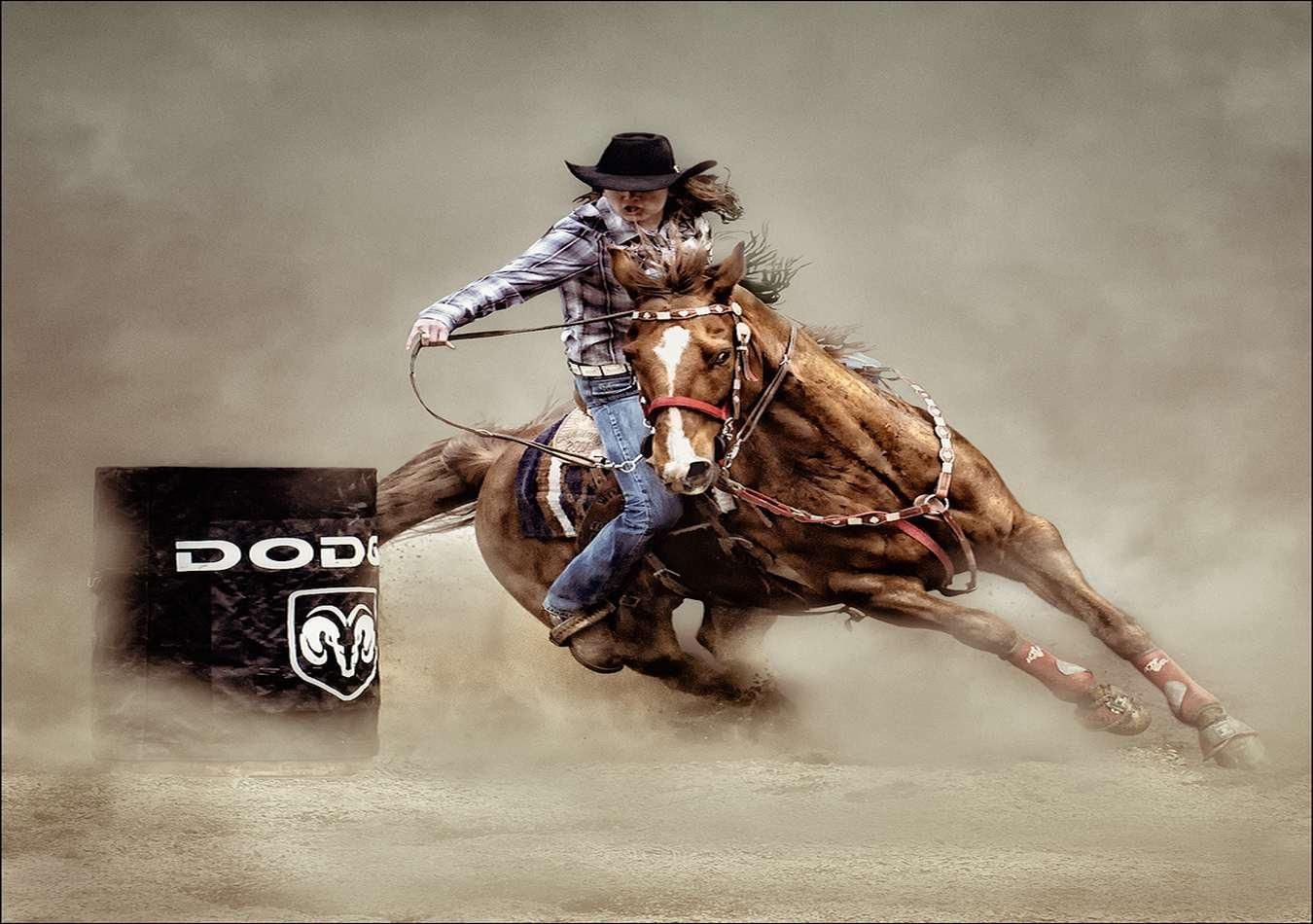 Rodeo Wallpapers Top Free Rodeo Backgrounds Wallpaperaccess