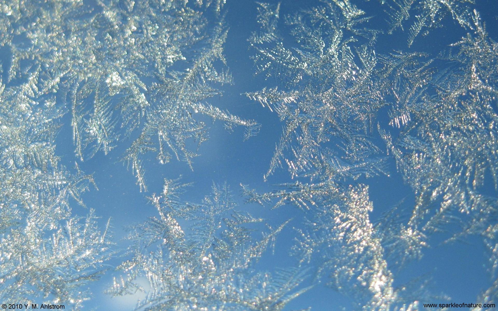 фото льда на стекле пихает