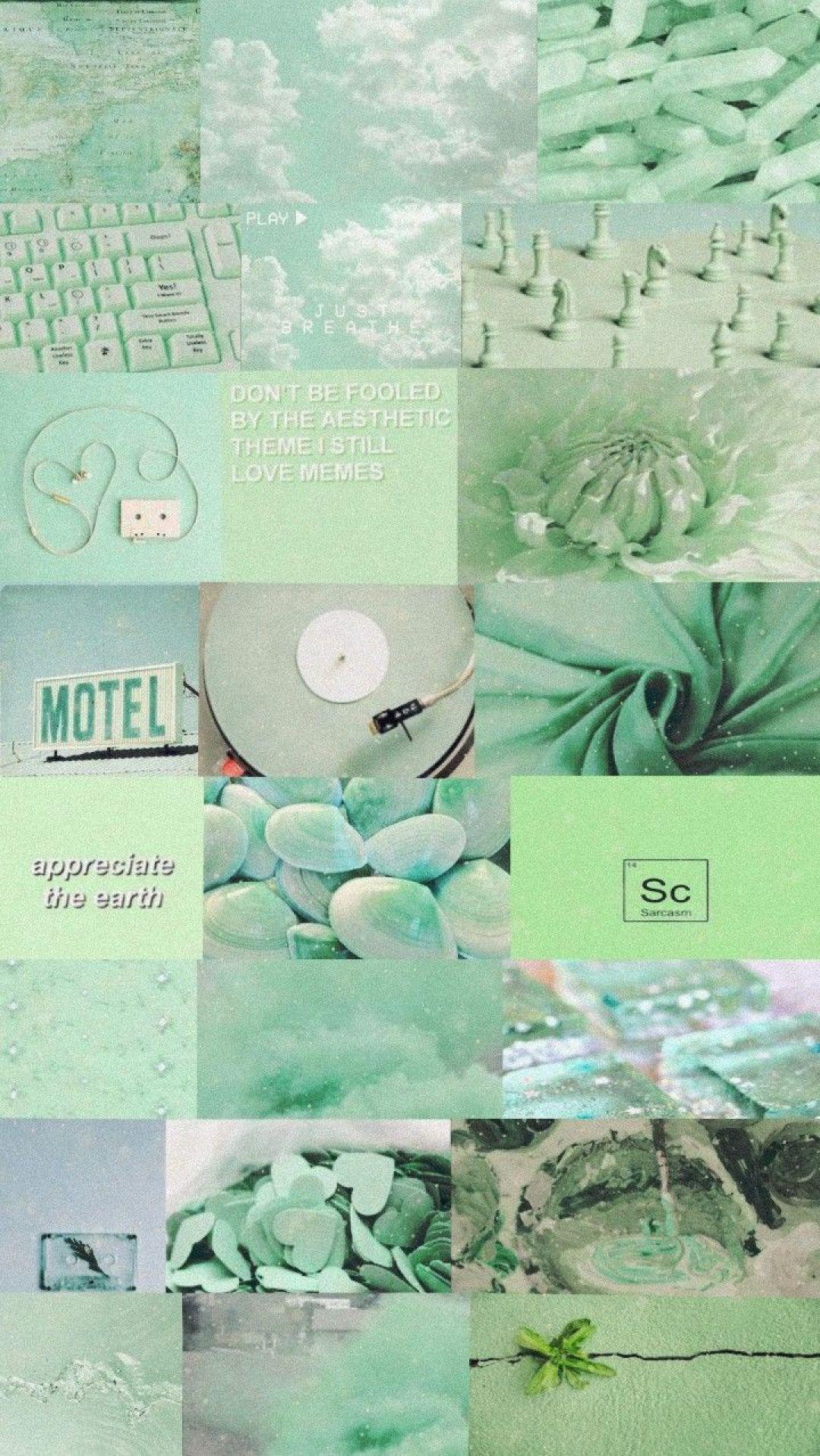 1080x1917 Aesthetic iPhone 11 Mint Green Wallpaper