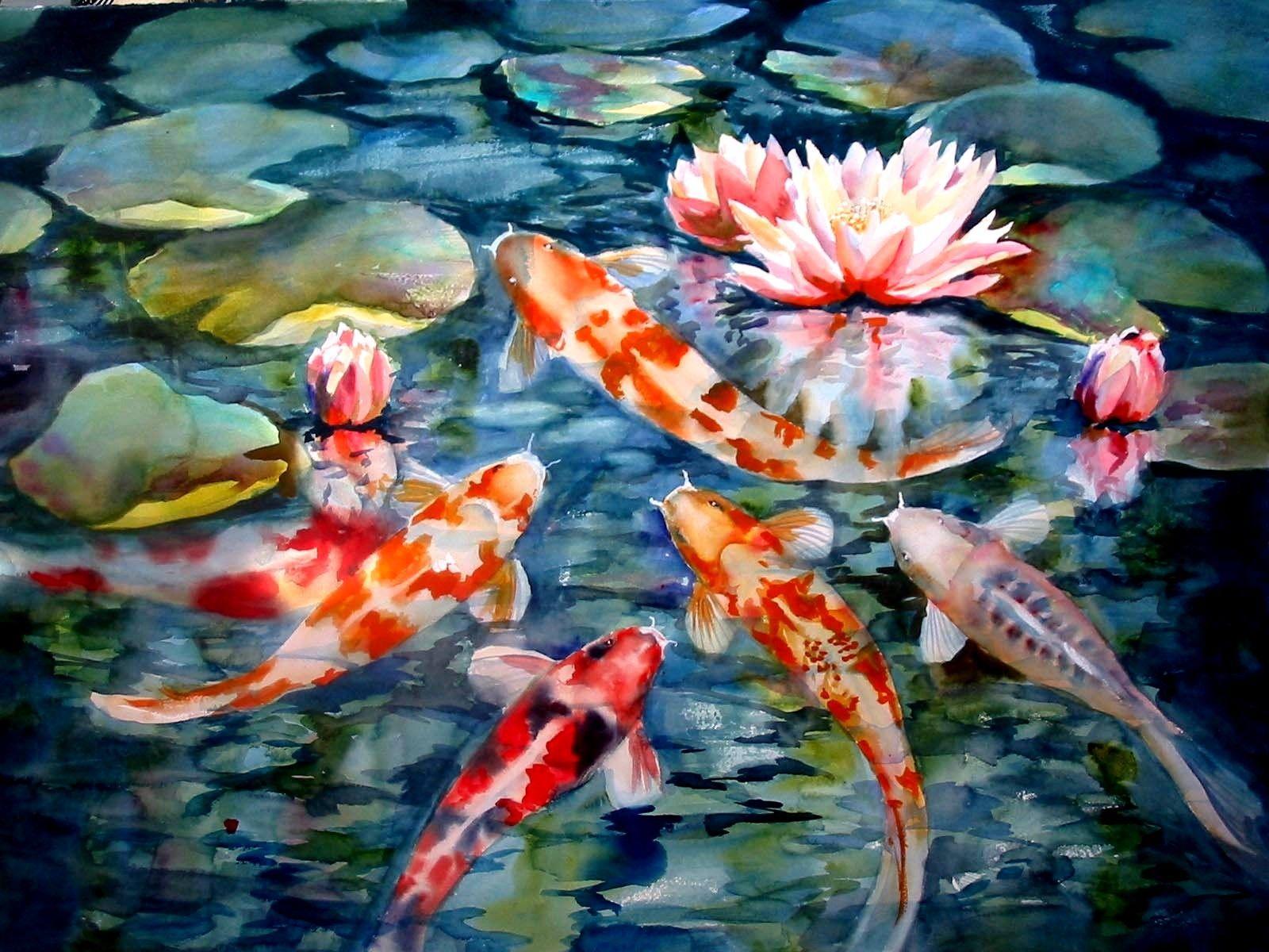 Japanese Koi Fish Pond Wallpapers Top Free Japanese Koi