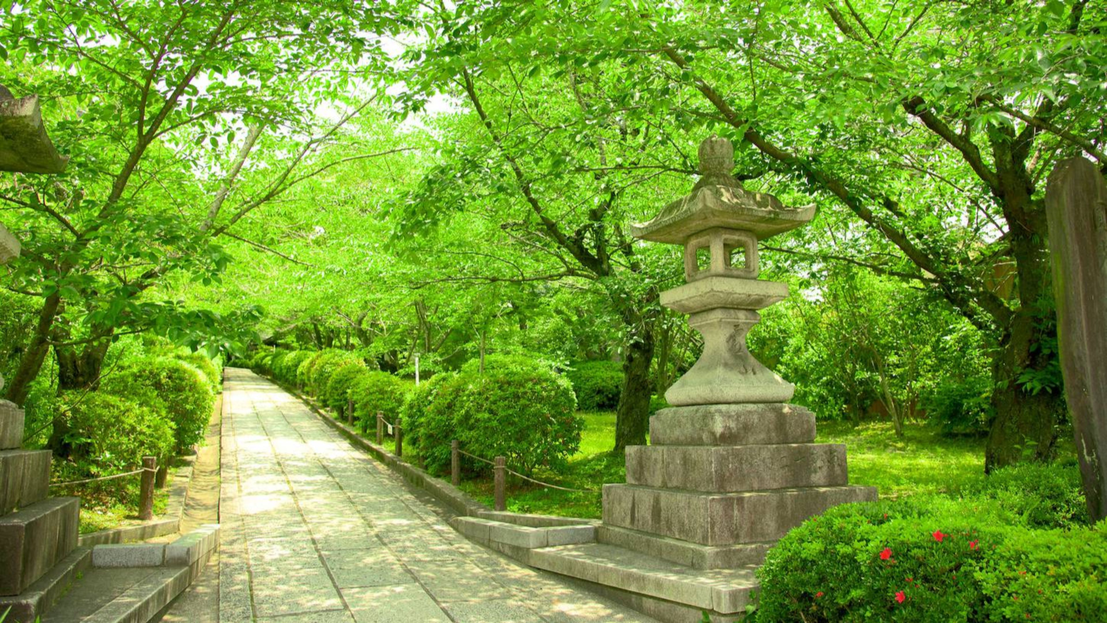 4K Kyoto Wallpapers - Top Free 4K Kyoto Backgrounds ...