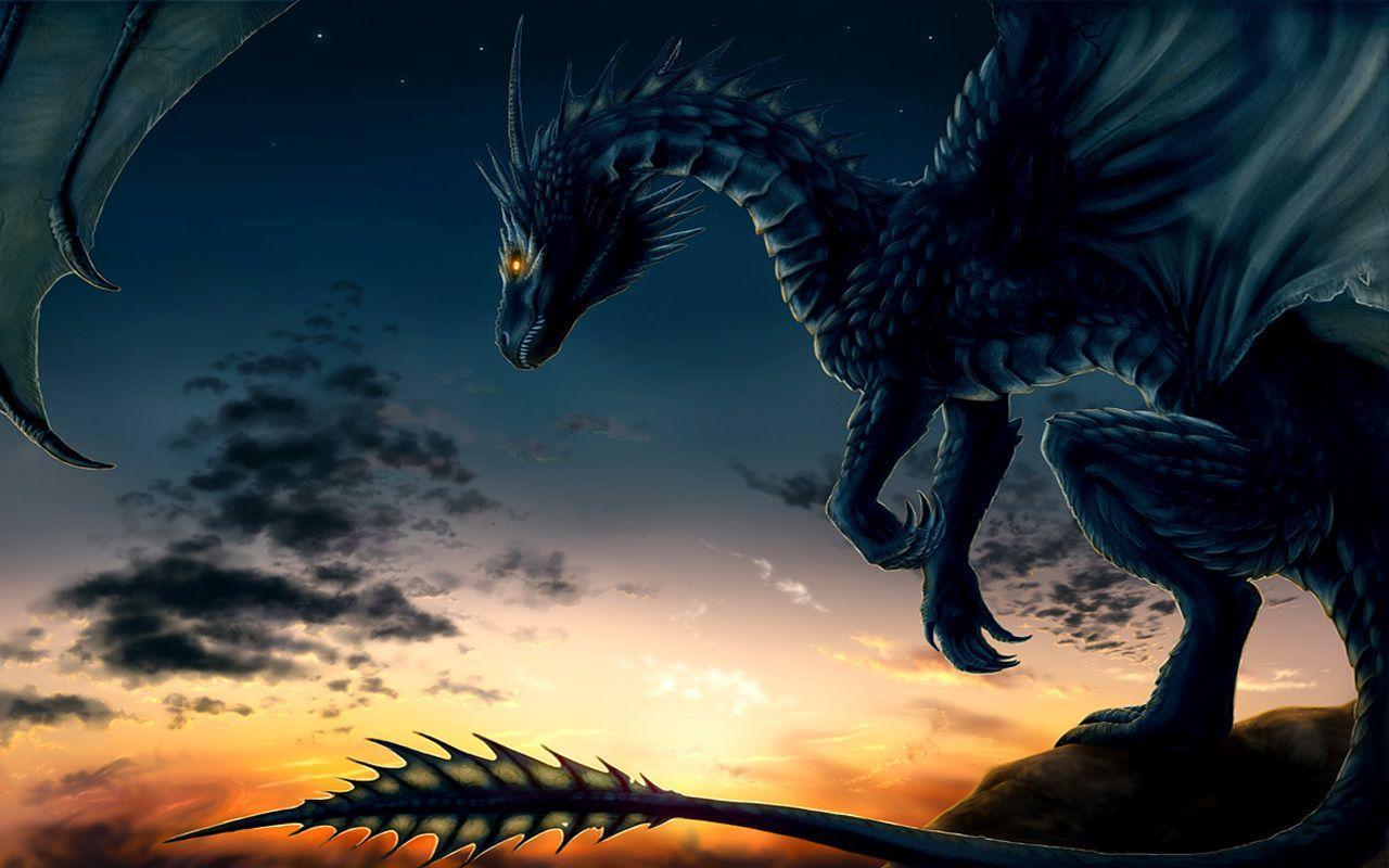 Beautiful Dragon Wallpapers Top Free Beautiful Dragon