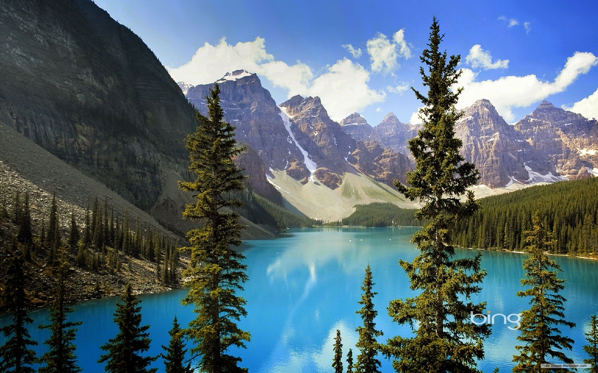 Top Free Bing Backgrounds