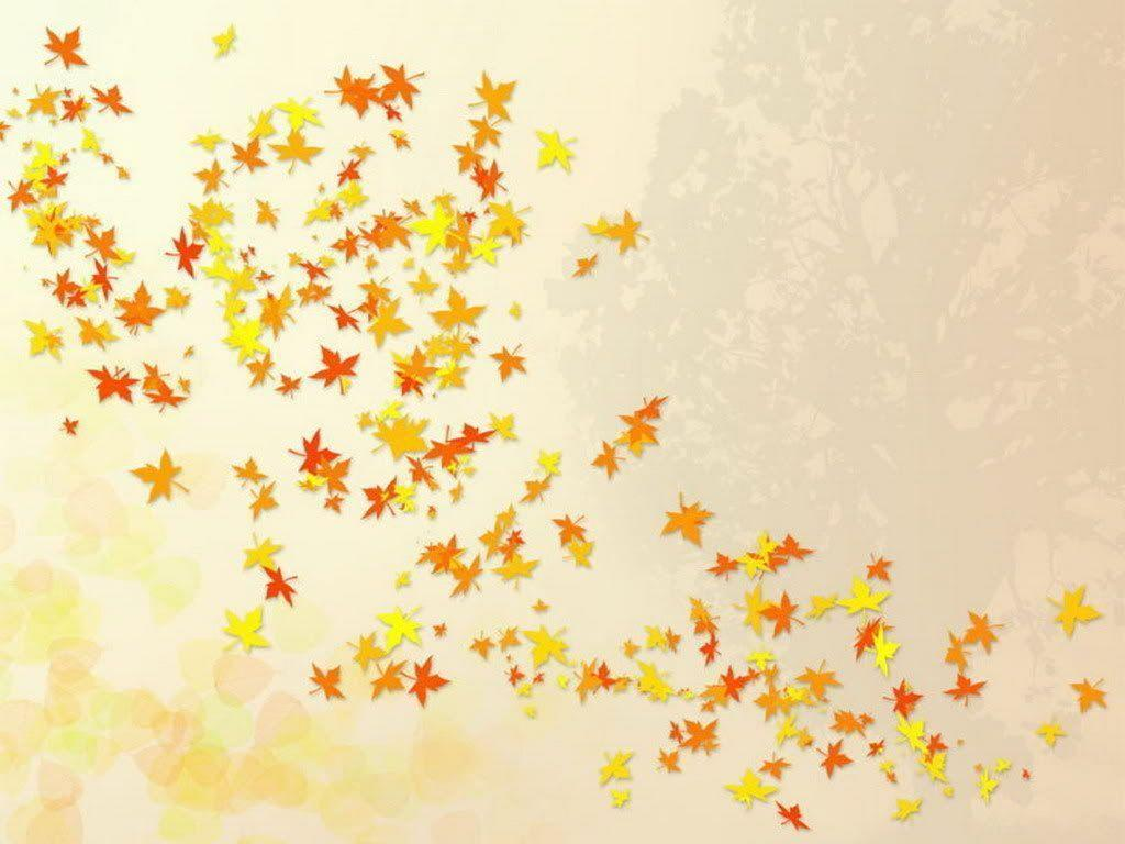 Cute Fall Wallpapers Top Free Cute Fall Backgrounds Wallpaperaccess