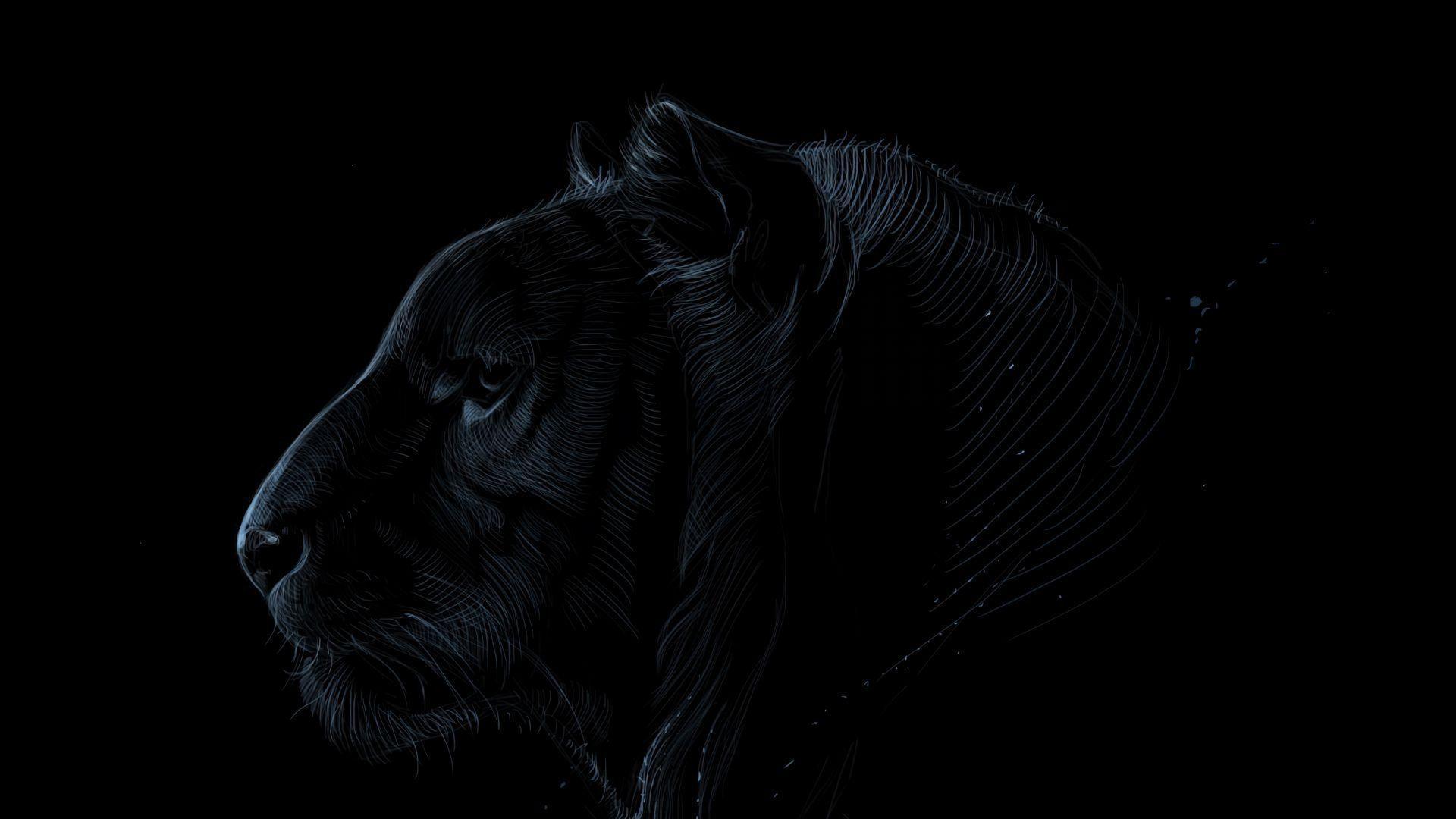 Dark Tiger Wallpapers Top Free Dark Tiger Backgrounds Wallpaperaccess