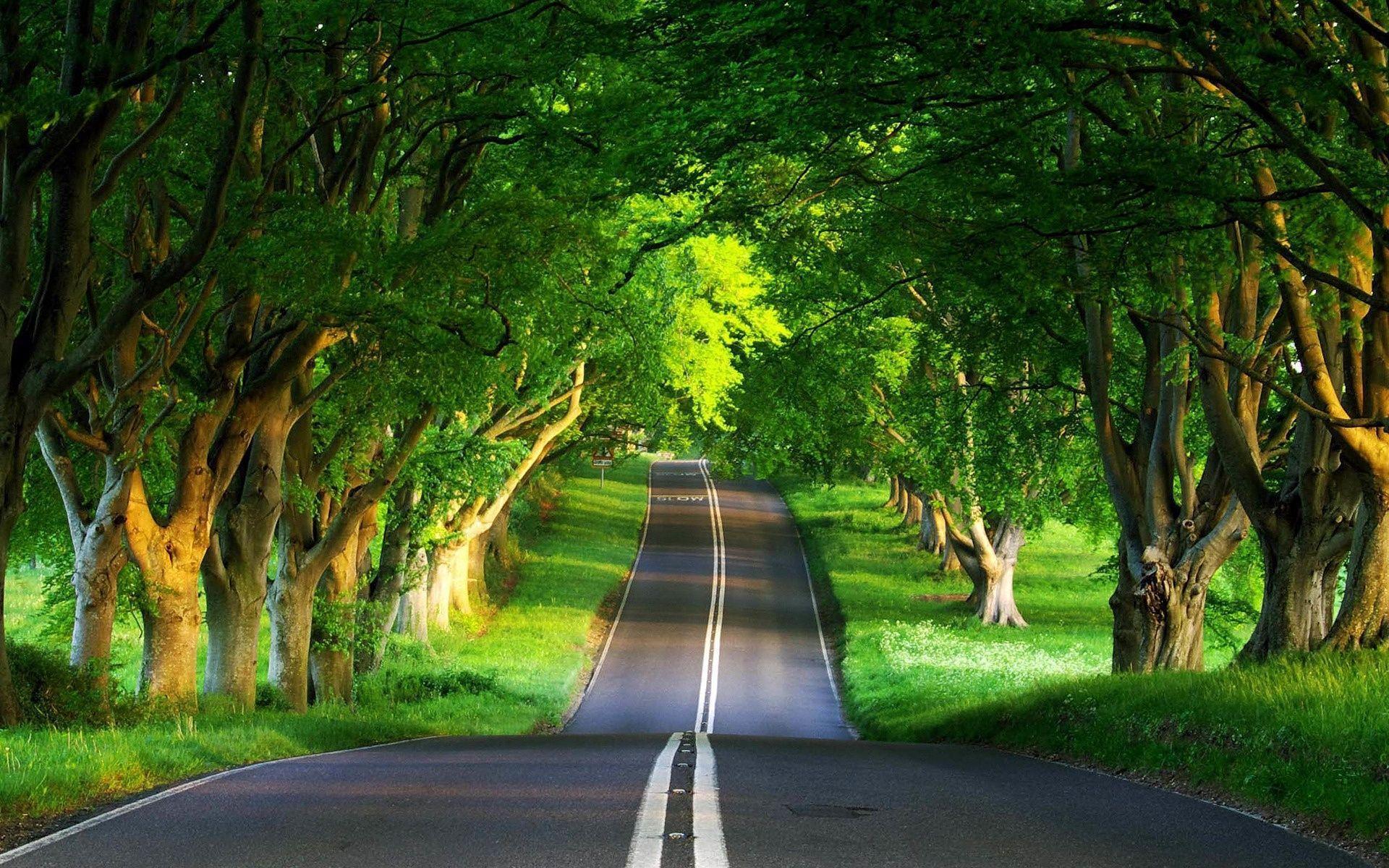 Pemandangan Wallpapers - Top Free Pemandangan Backgrounds - WallpaperAccess