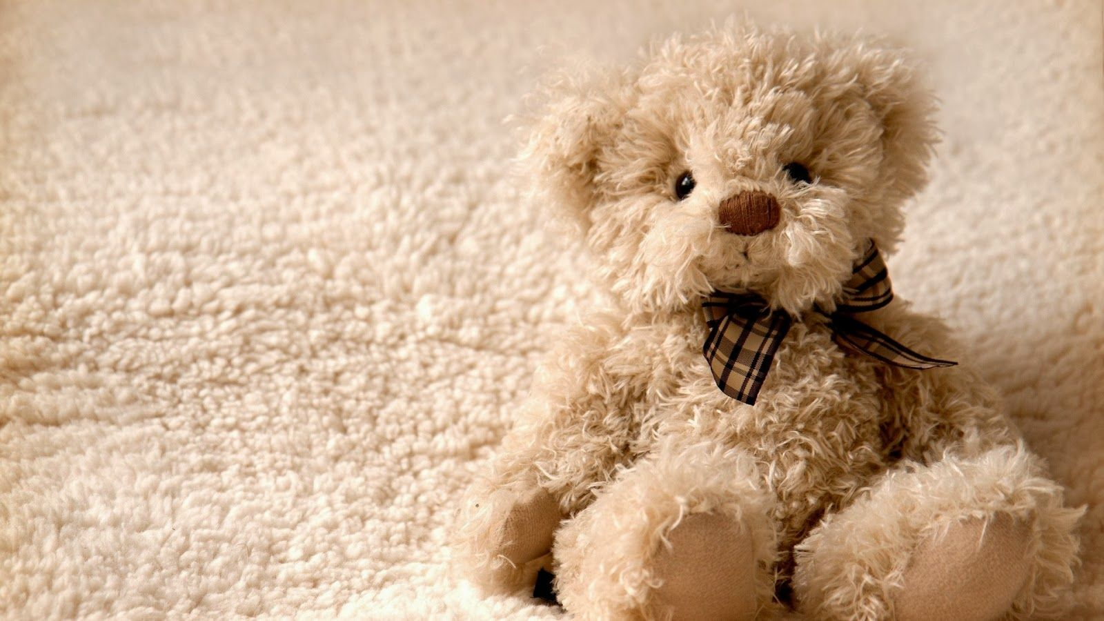 Cute Bear Wallpapers Top Free Cute Bear Backgrounds Wallpaperaccess