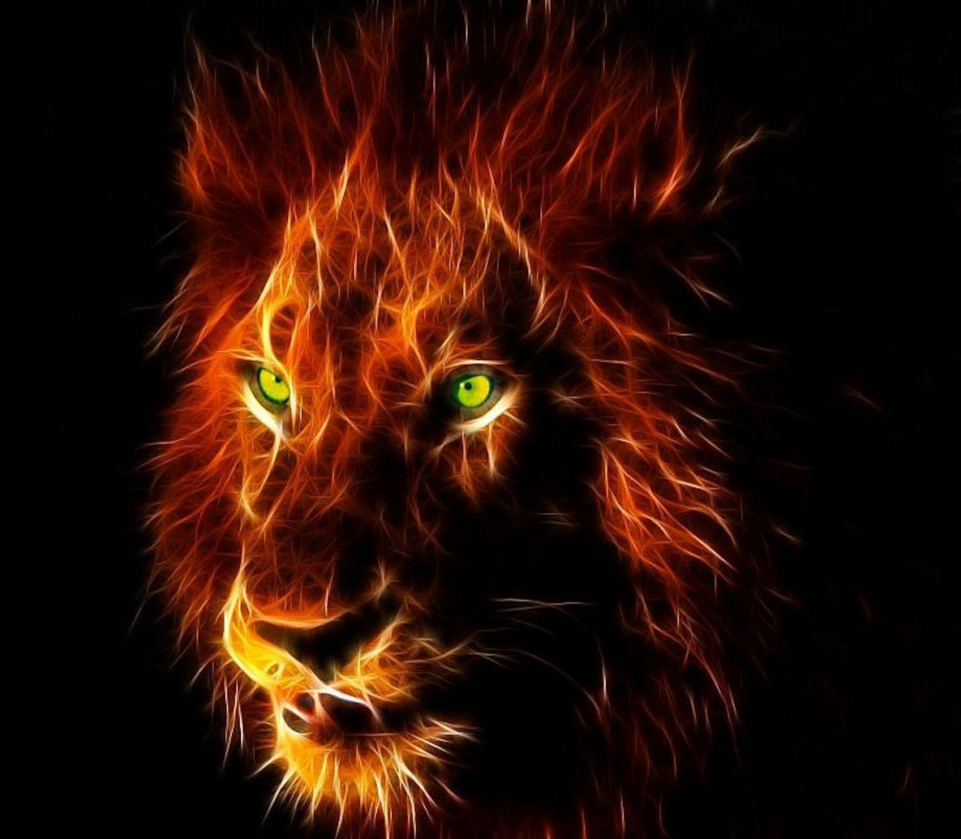 Hình nền nguy hiểm 1880x1640 14x68w5 Sư tử nguy hiểm Full HD HD