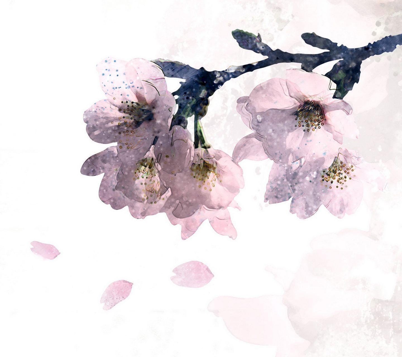 1440x1280 Korean Style Hand Painted Flower Wallpapers 14 Jpg