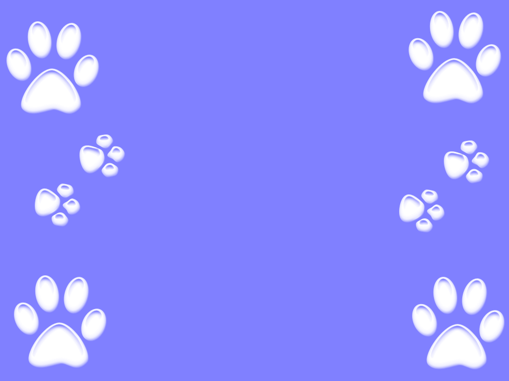 Dog Paw Wallpapers Top Free Dog Paw Backgrounds Wallpaperaccess