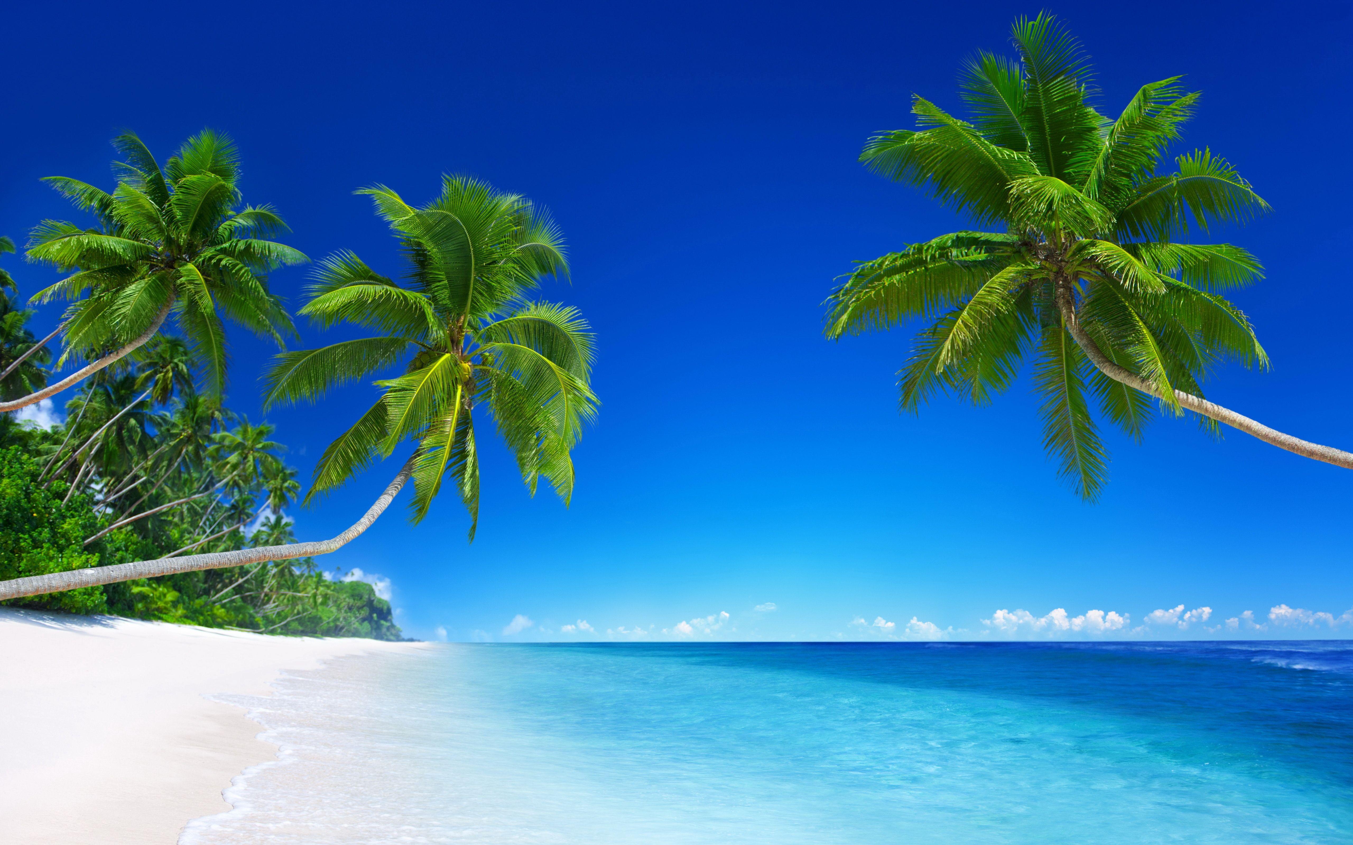 12K Beach Wallpapers   Top Free 12K Beach Backgrounds   WallpaperAccess