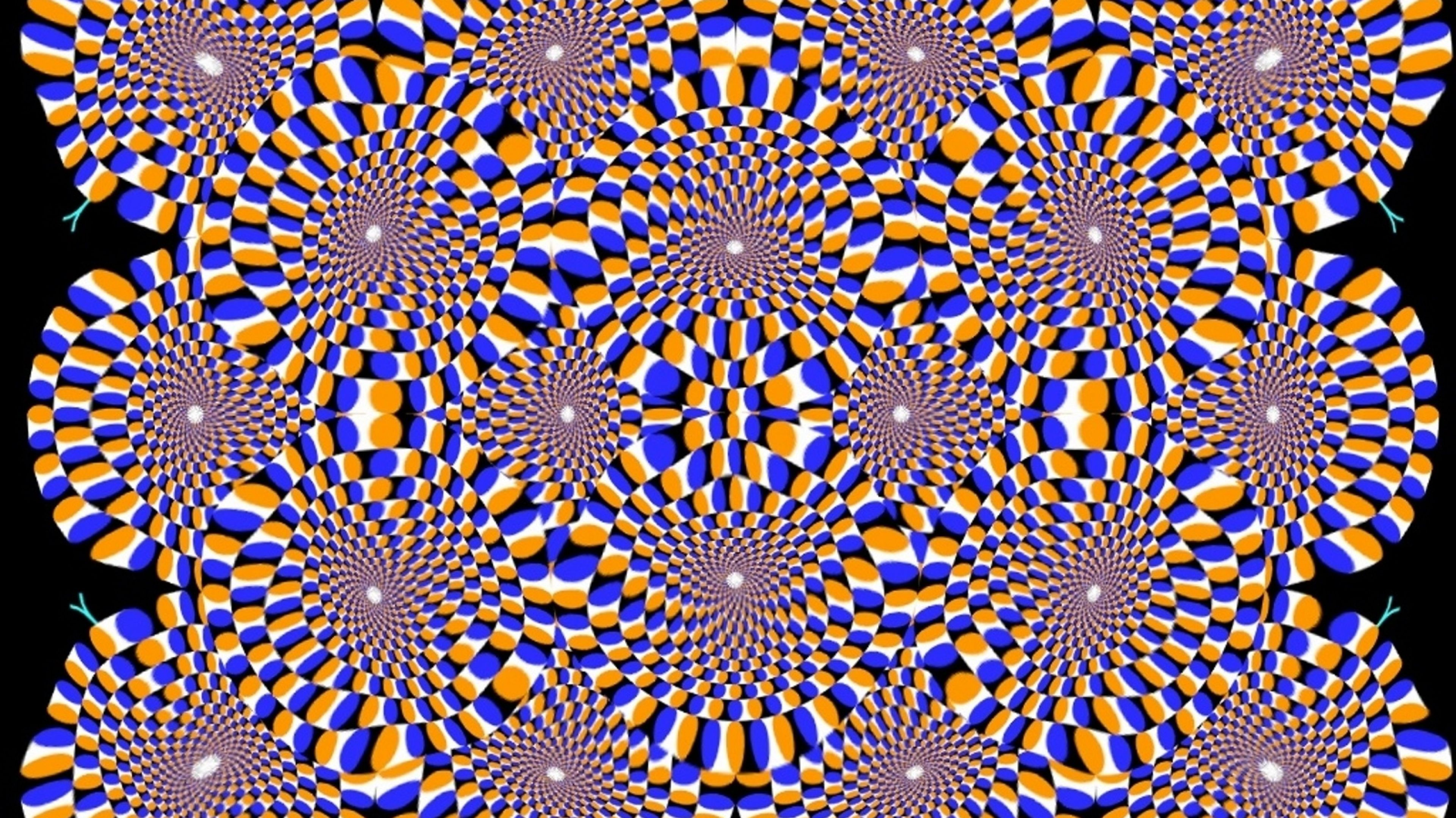 "3840x2160 Black And White Optical Illusion Wallpaper | Wallpaper Studio 10 ..."">"