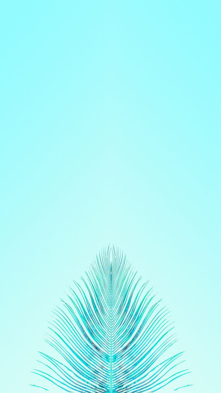 Minimalist Iphone Teal Wallpapers Top Free Minimalist Iphone Teal Backgrounds Wallpaperaccess