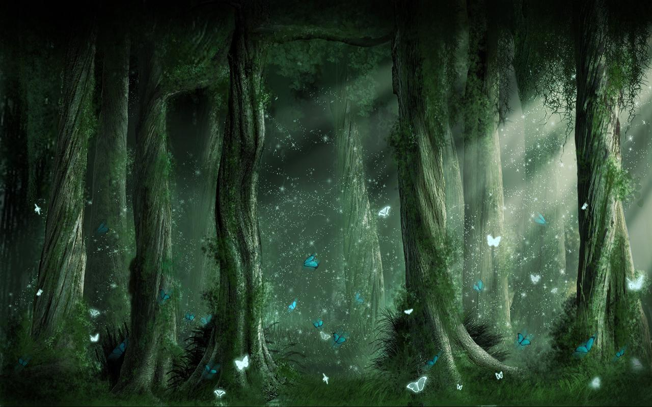 Forest Fairy Wallpapers - Top Free Forest Fairy Backgrounds
