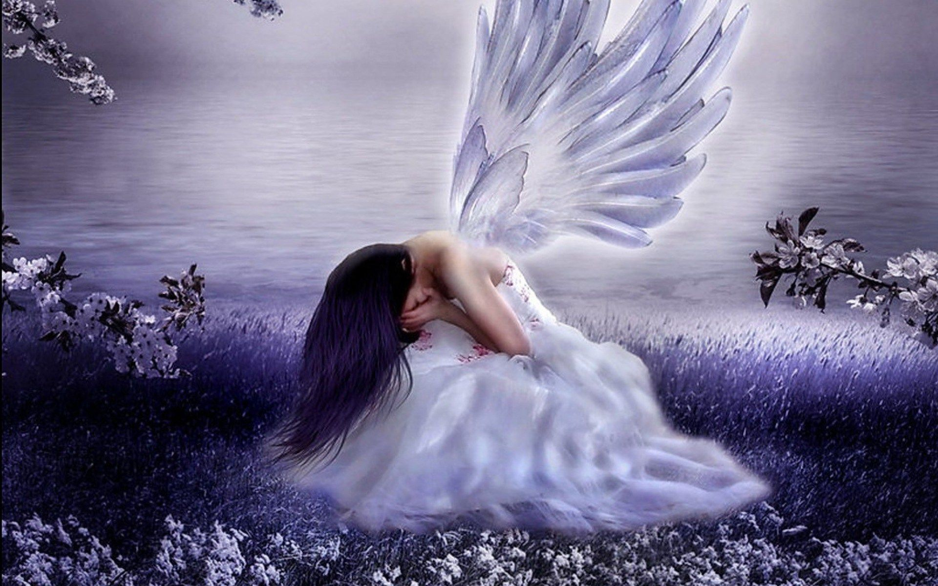 Beautiful Angels Wallpapers Top Free Beautiful Angels Backgrounds Wallpaperaccess