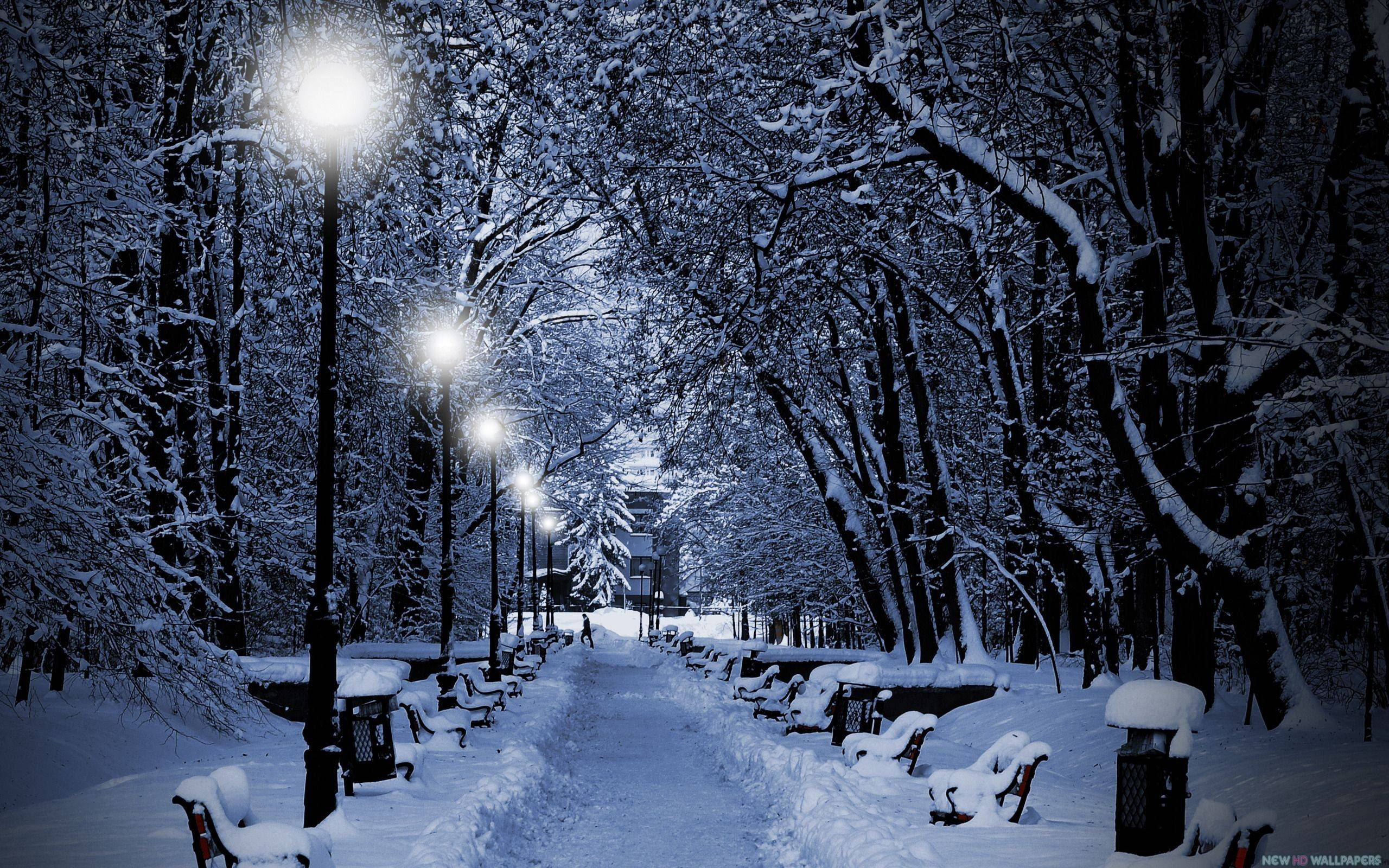 Snowy Night Wallpapers Top Free Snowy Night Backgrounds Wallpaperaccess