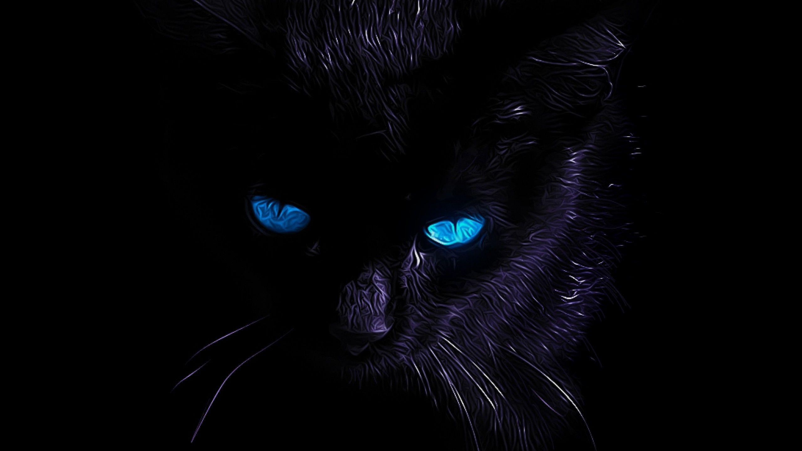 Blue Cat Wallpapers Top Free Blue Cat Backgrounds Wallpaperaccess