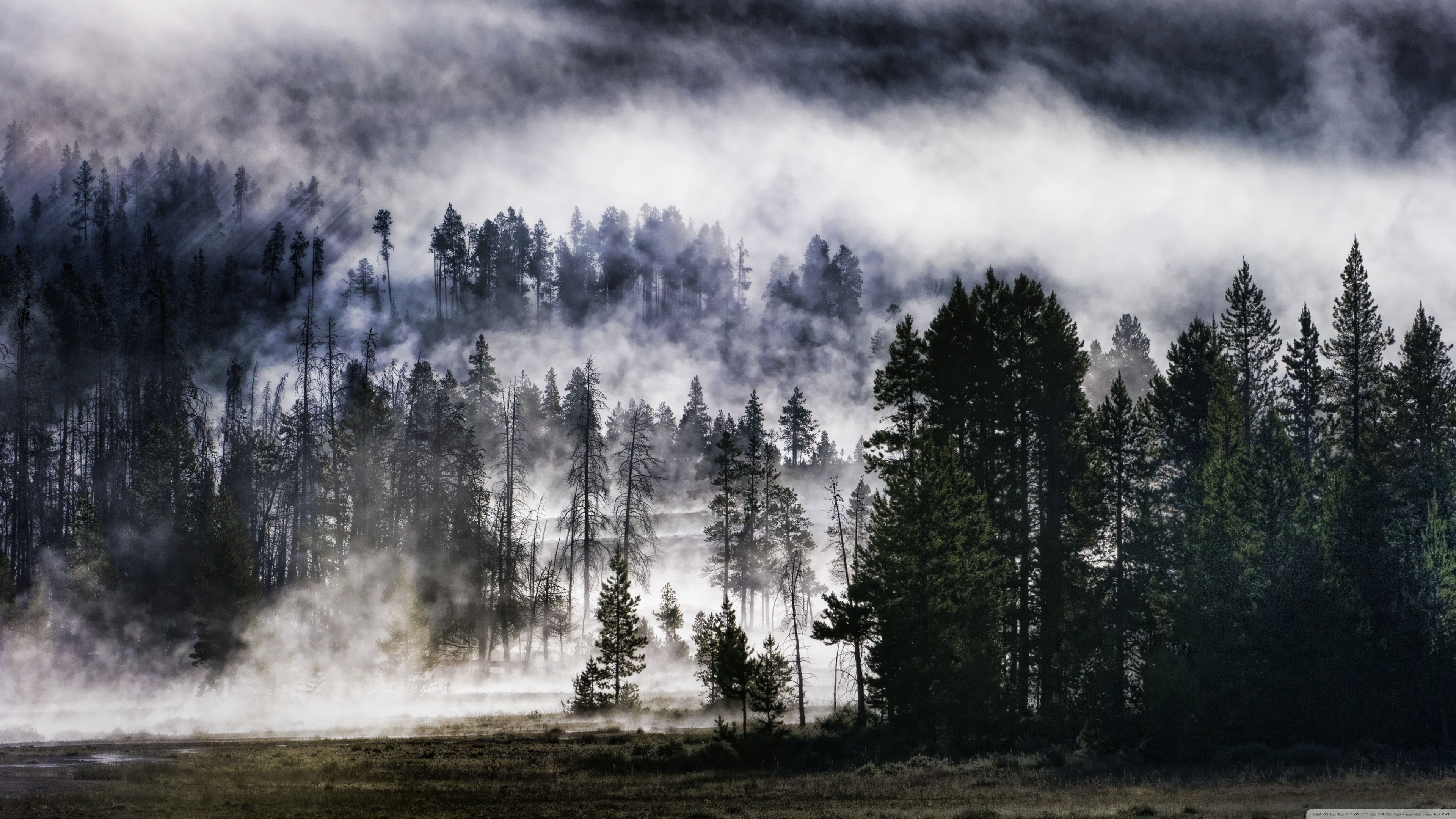 Foggy Ultra Hd Landscape Wallpapers Top Free Foggy Ultra