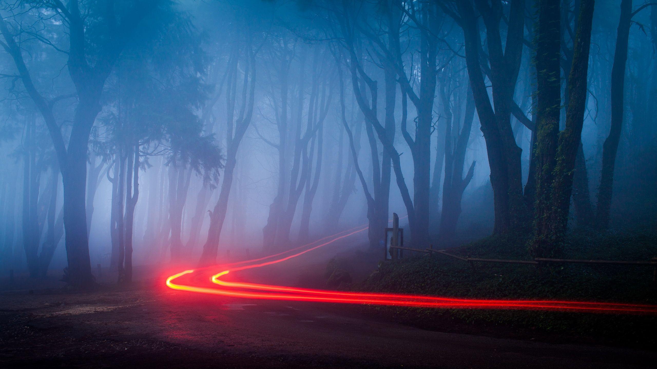 Foggy Ultra HD Landscape Wallpapers - Top Free Foggy Ultra ...