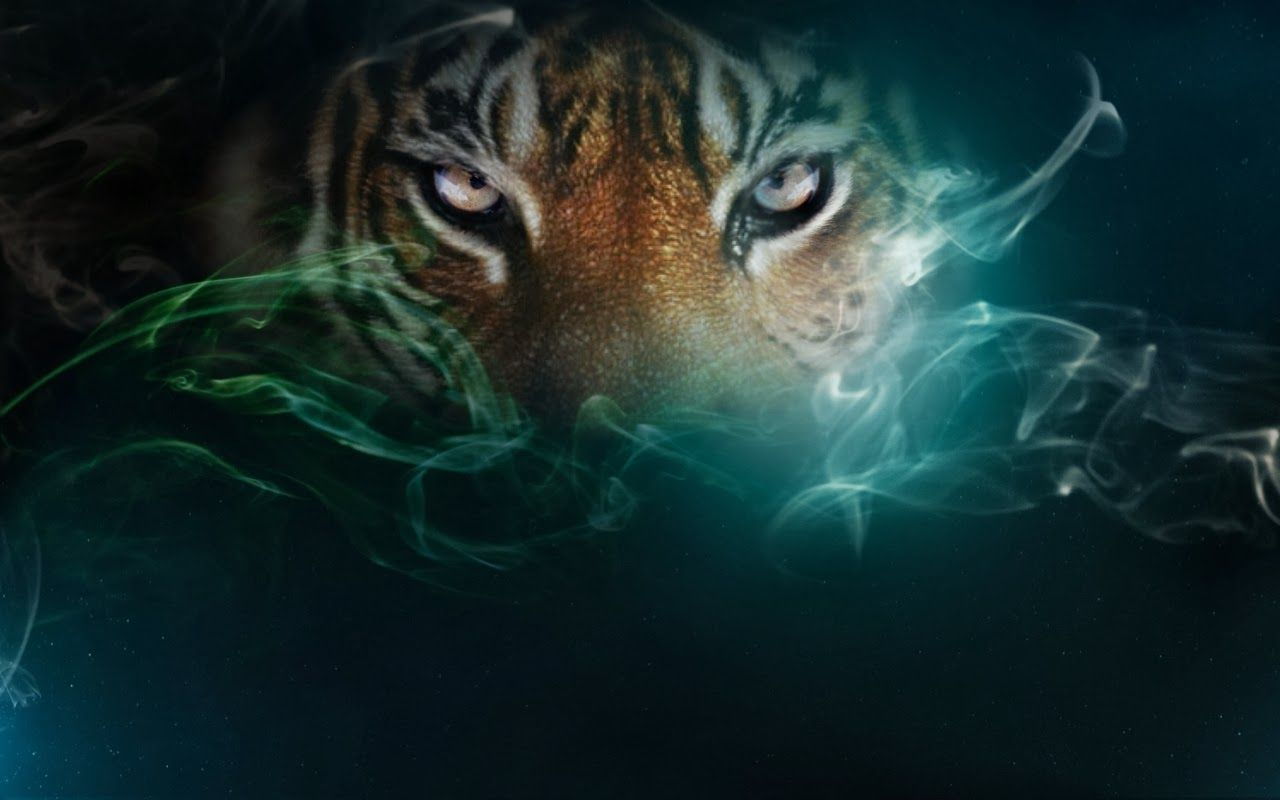 Tiger Eyes Wallpapers Top Free Tiger Eyes Backgrounds Wallpaperaccess