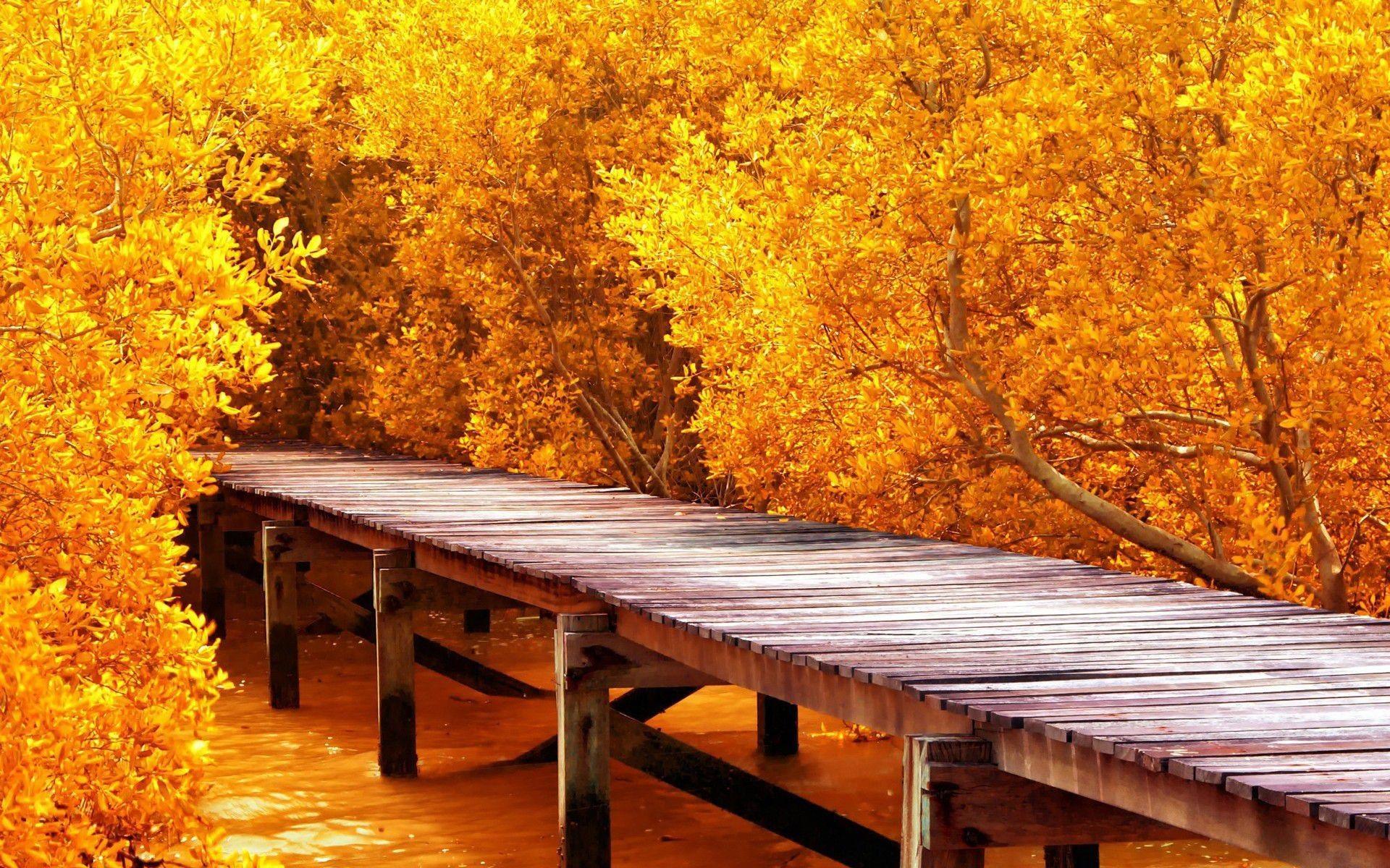 64K Ultra HD Nature Wallpapers - Top Free 64K Ultra HD ...