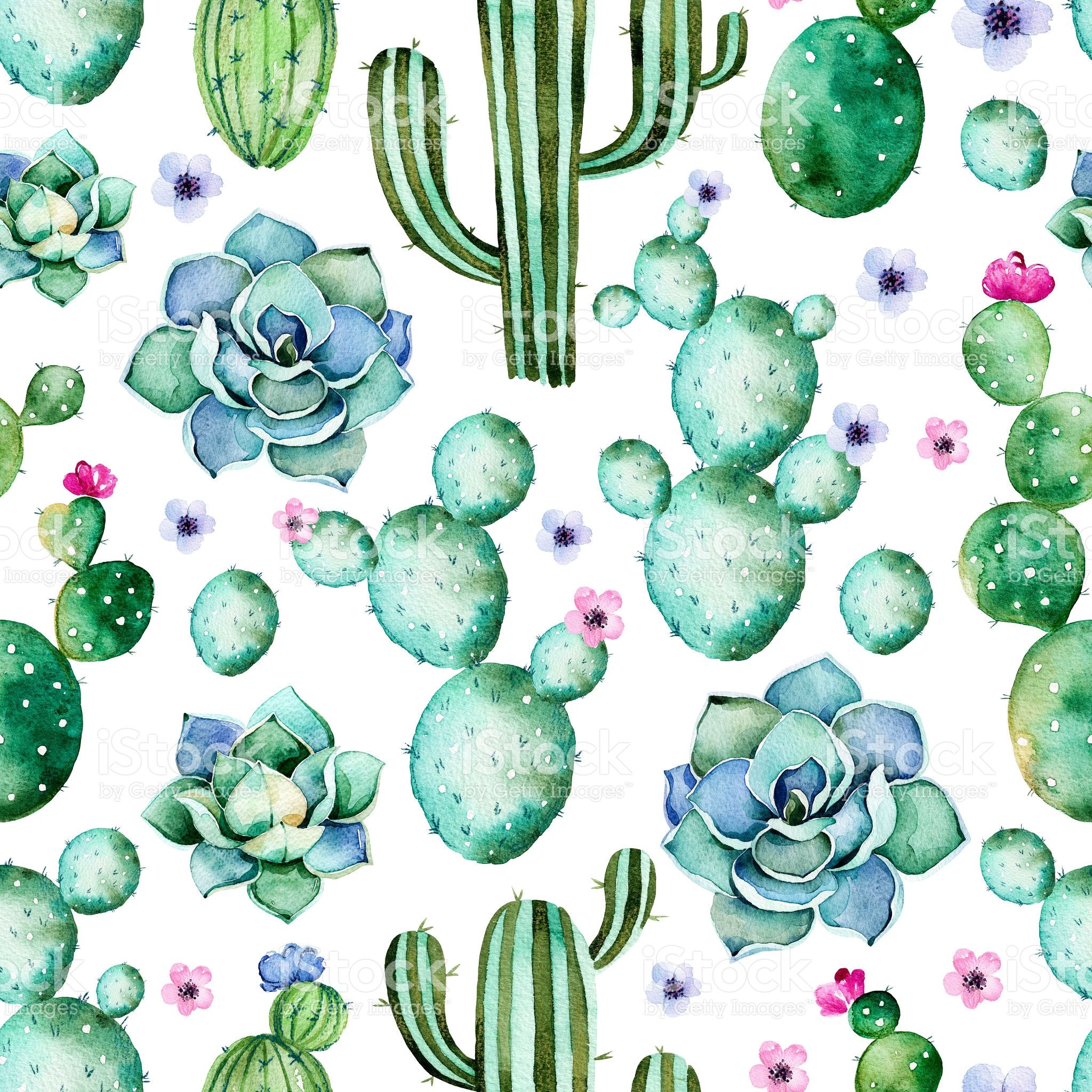 Cactus Print Wallpapers Top Free Cactus Print Backgrounds Wallpaperaccess