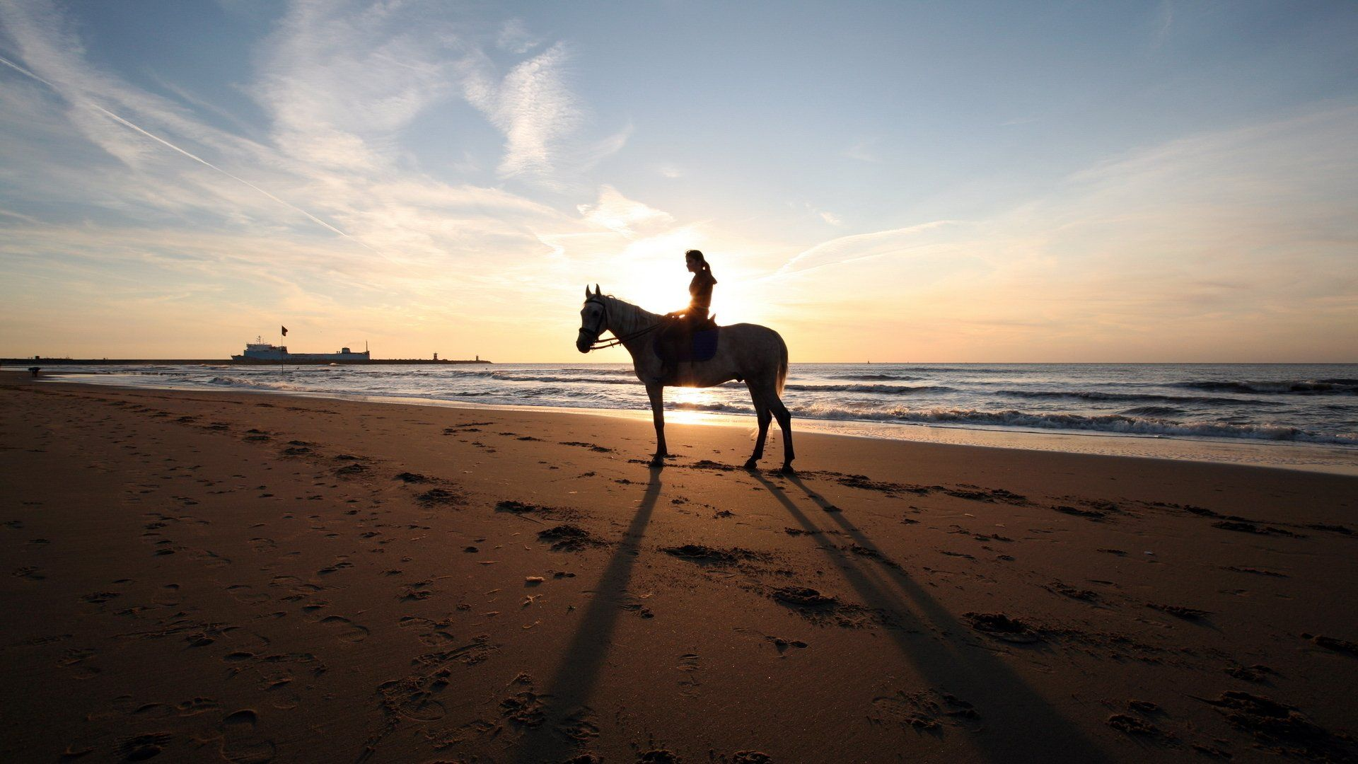 Horse On Beach Wallpapers Top Free Horse On Beach Backgrounds Wallpaperaccess