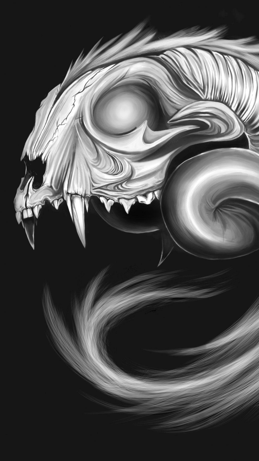 Skulls and Dragons Wallpapers - Top Free Skulls and Dragons