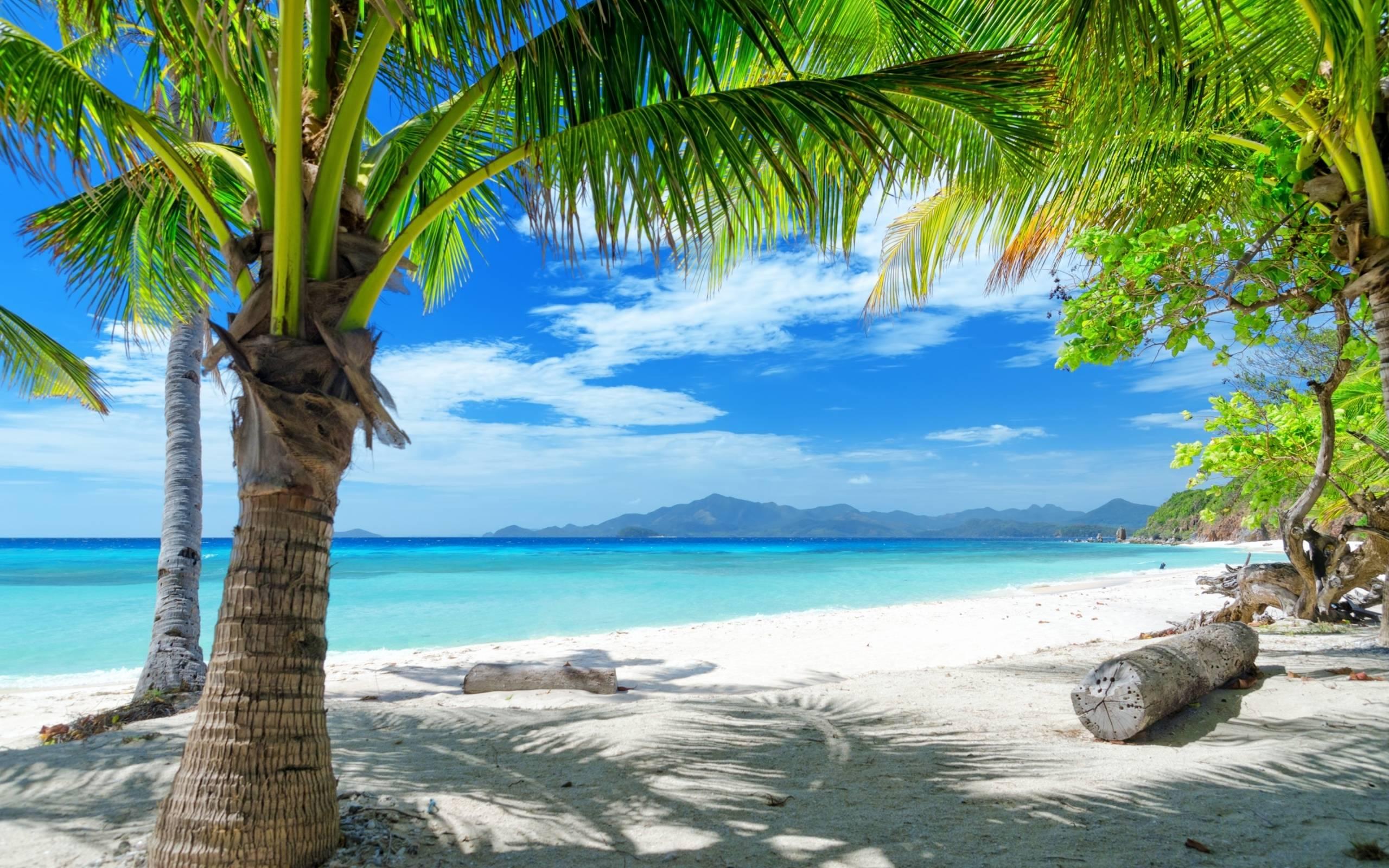 Free Desktop Wallpaper Ocean Beach