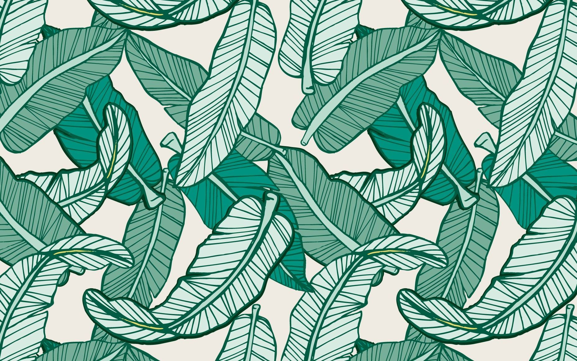 Tropical Leaf Desktop Wallpapers Top Free Tropical Leaf Desktop Backgrounds Wallpaperaccess When you boot your computer, there is an initial screen that comes up, in. tropical leaf desktop wallpapers top