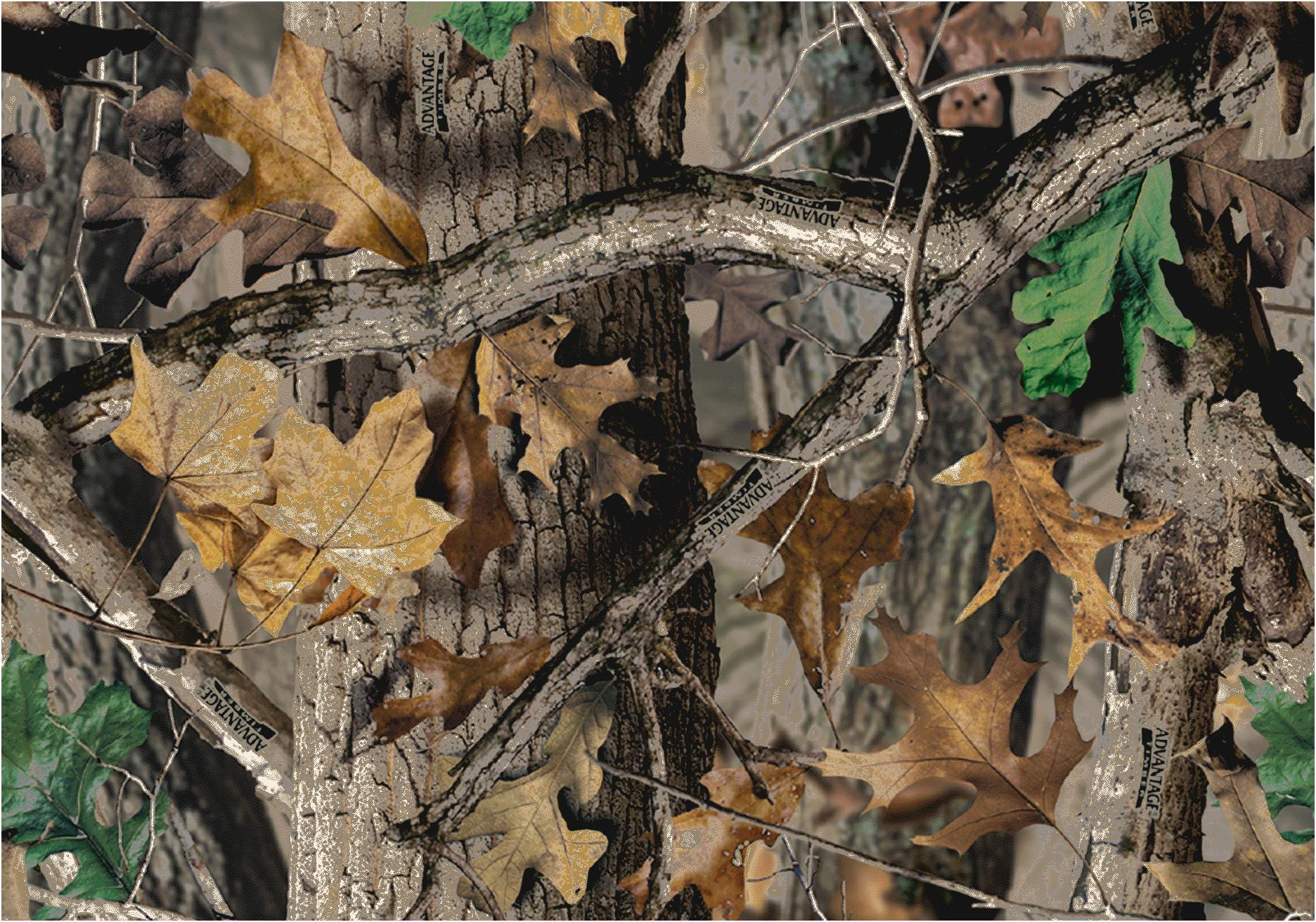 "1872x1312 Realtree-Camo-Wallpaper-1 - wallpaper.wiki""> · Download · 1920x1200 Realtree Wallpaper ..."