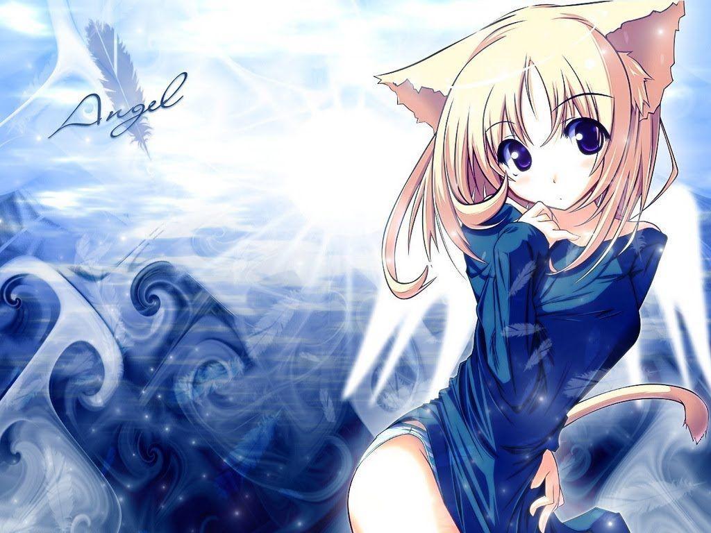 Kawaii anime cat wallpapers top free kawaii anime cat - Wallpaper 1024x768 anime ...