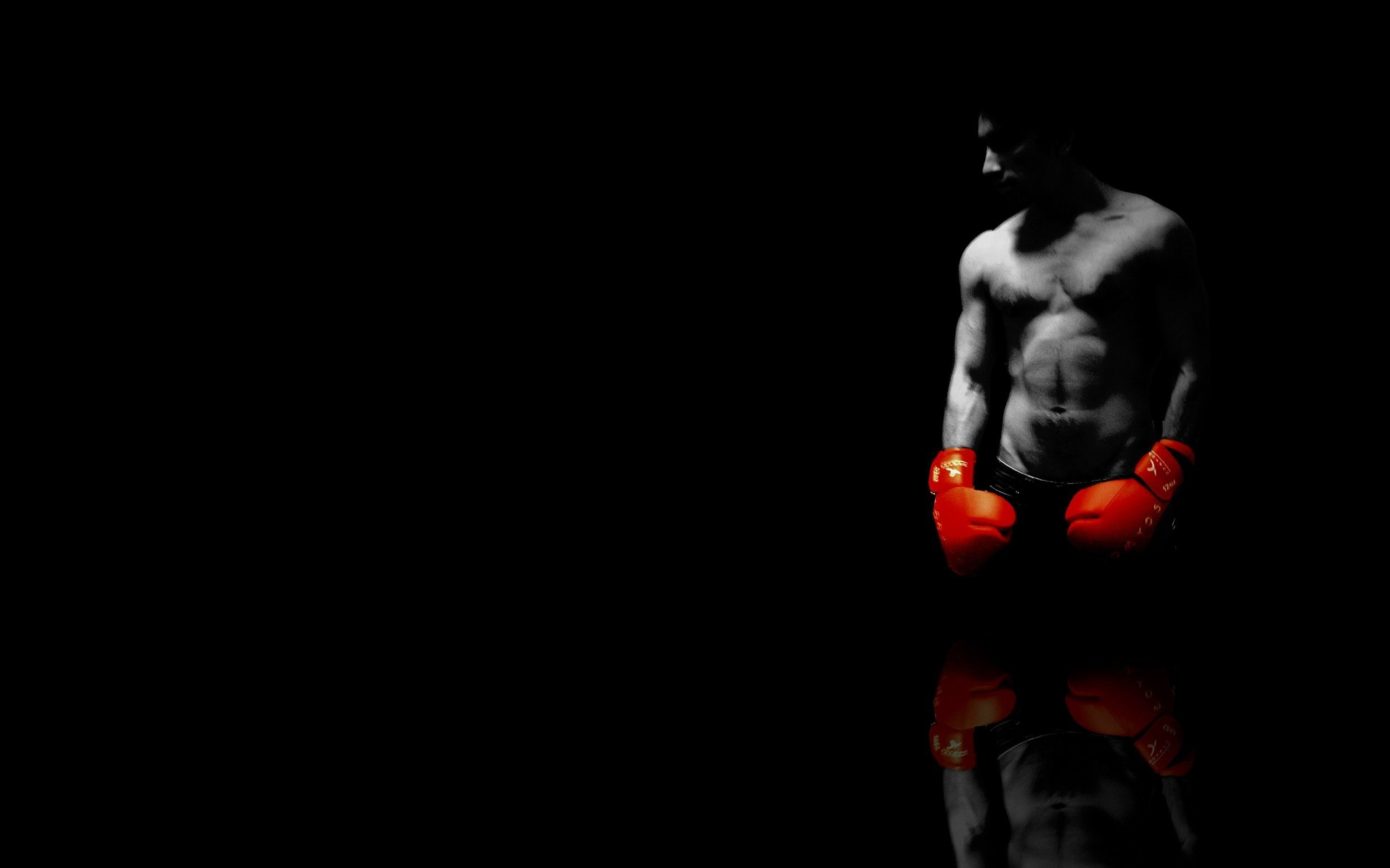 Boxing Wallpapers Top Free Boxing Backgrounds Wallpaperaccess