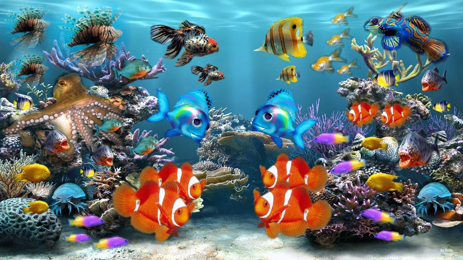 1600x900 Aquarium Wallpapers Top Free 1600x900 Aquarium Backgrounds Wallpaperaccess