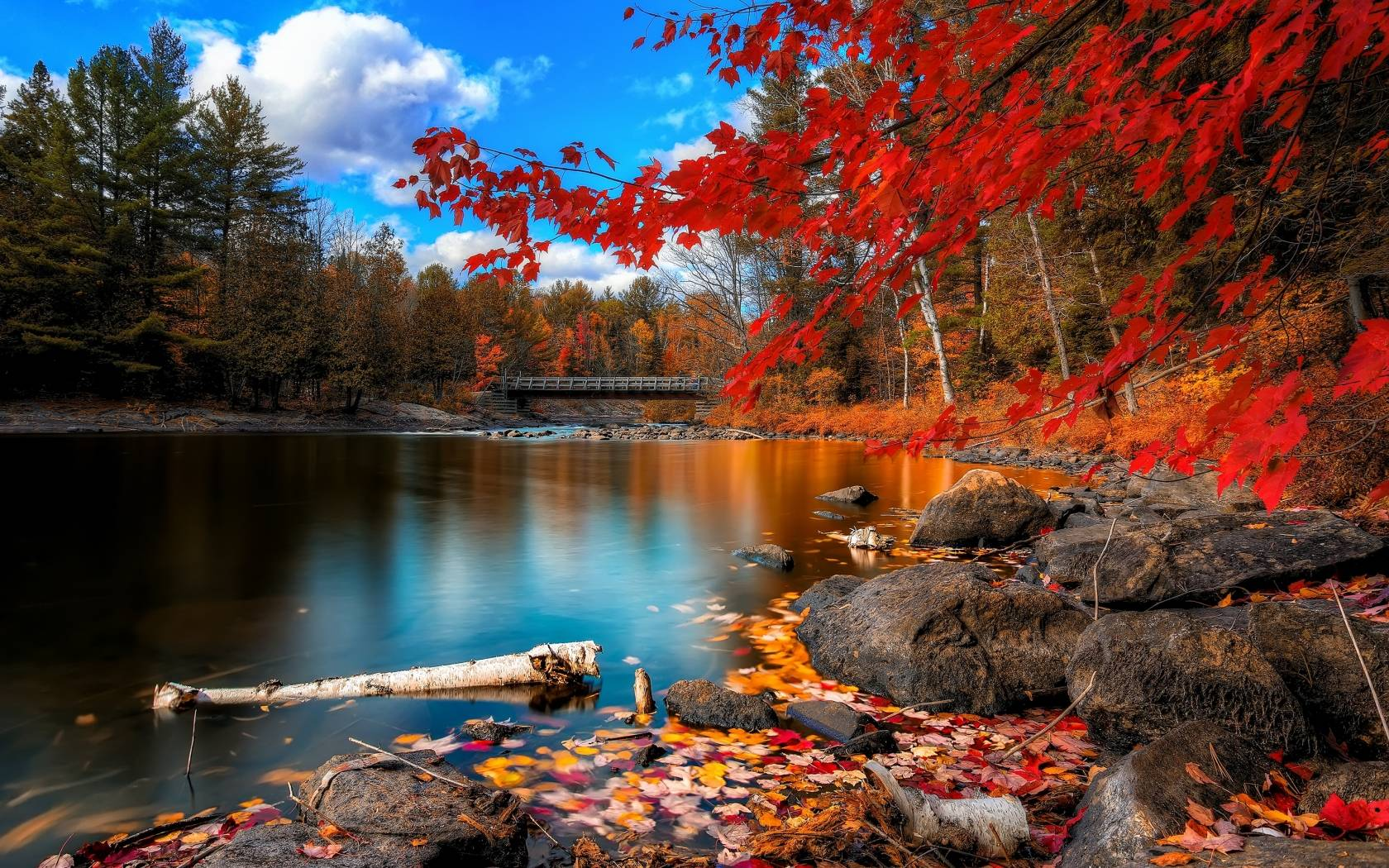 Fall Scenery Wallpapers Top Free Fall Scenery Backgrounds Wallpaperaccess