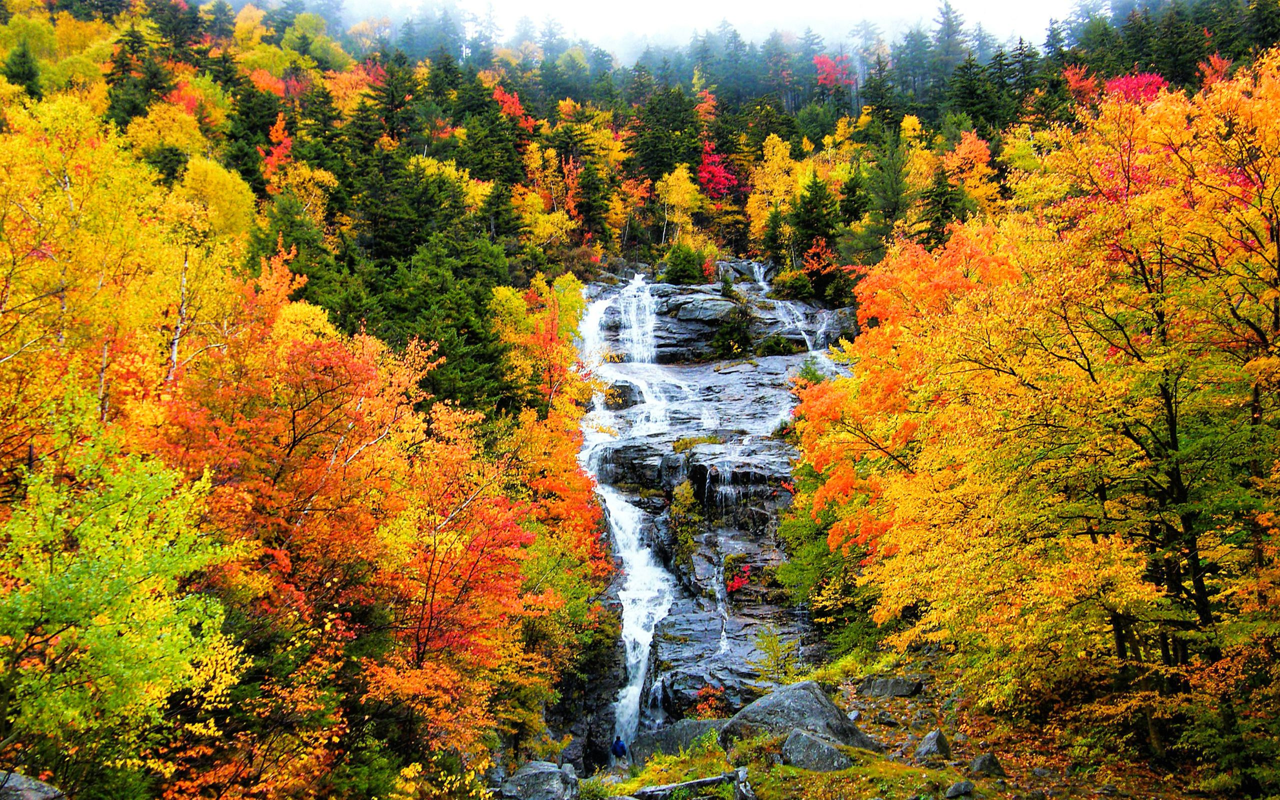 Fall Scenery Wallpapers Top Free Fall Scenery Backgrounds
