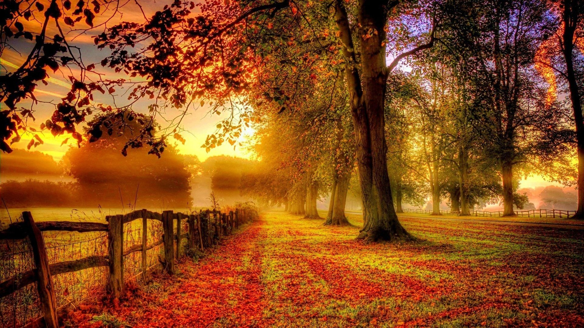 Autum Wallpapers Top Free Autum Backgrounds Wallpaperaccess
