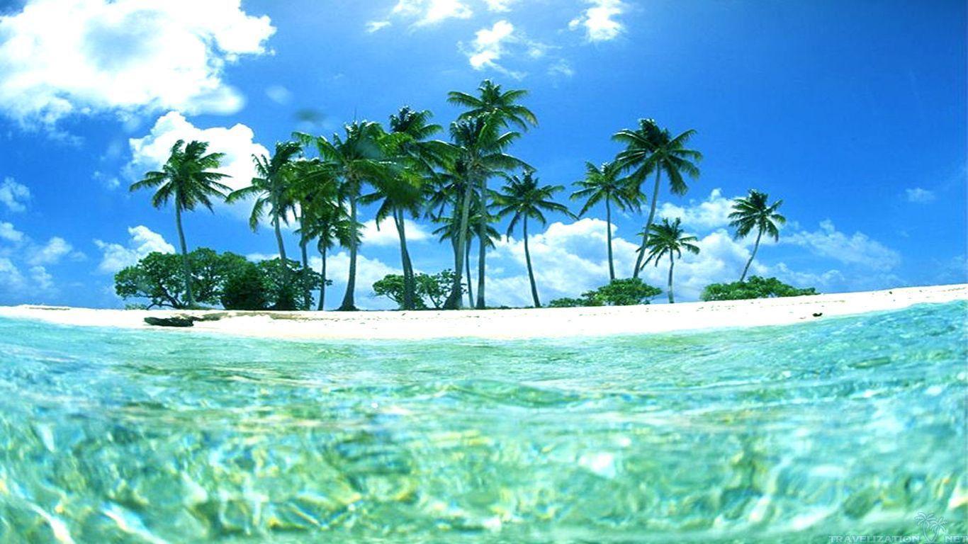 Hình nền nhiệt đới 1366x768.  Hình nền nhiệt đới, Hình nền máy tính nhiệt đới và Hình nền nhiệt đới tốt nhất