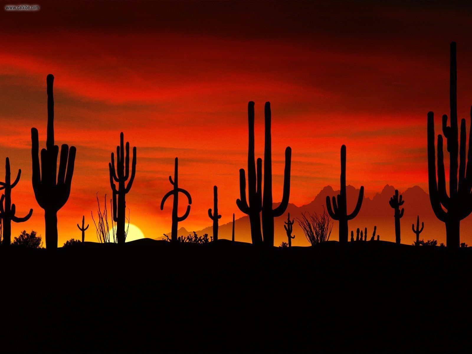 """3872x2592 741747 Awesome Mexico Wallpapers 