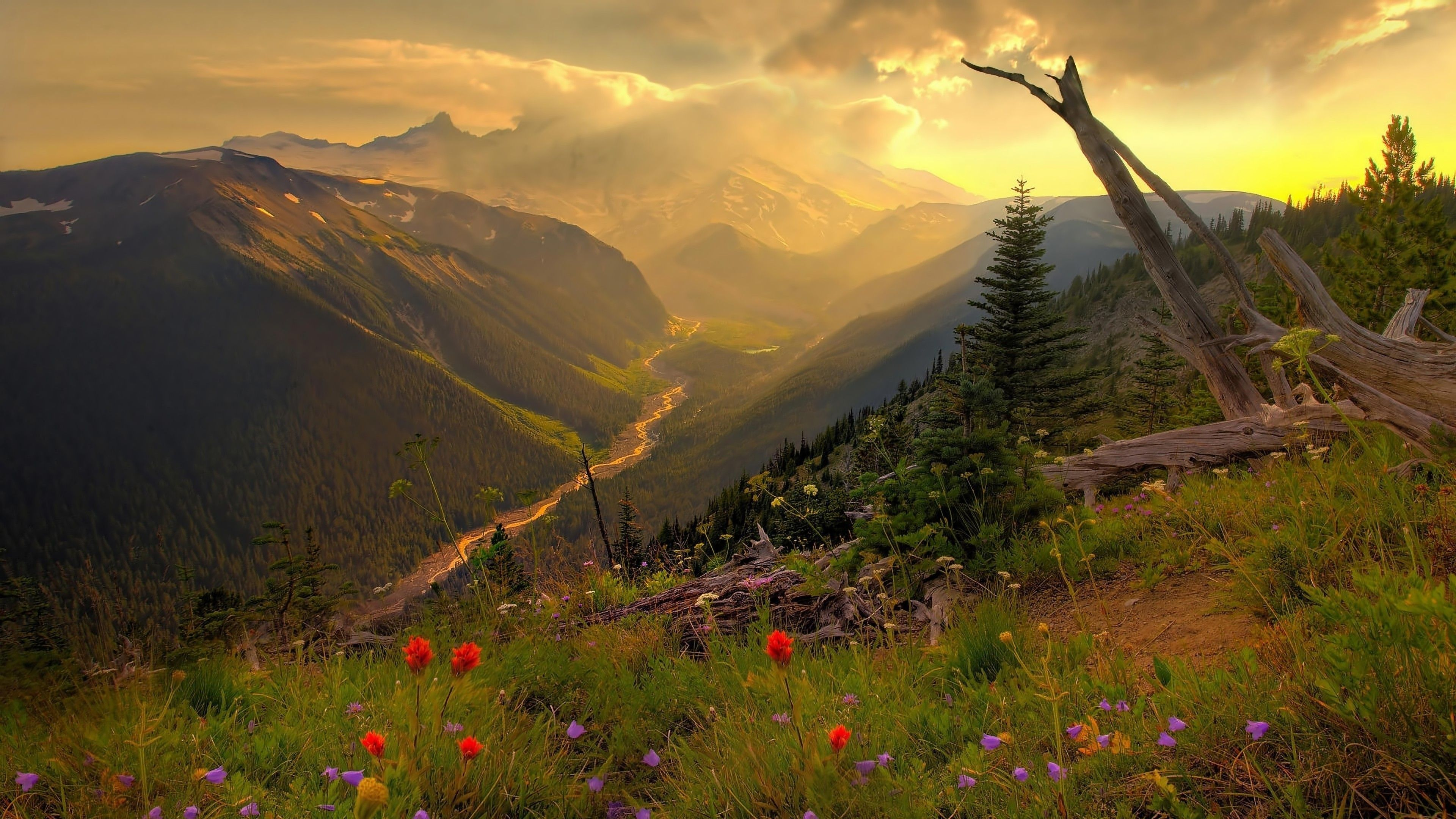 4k Nature Wallpapers Top Free 4k Nature Backgrounds Wallpaperaccess