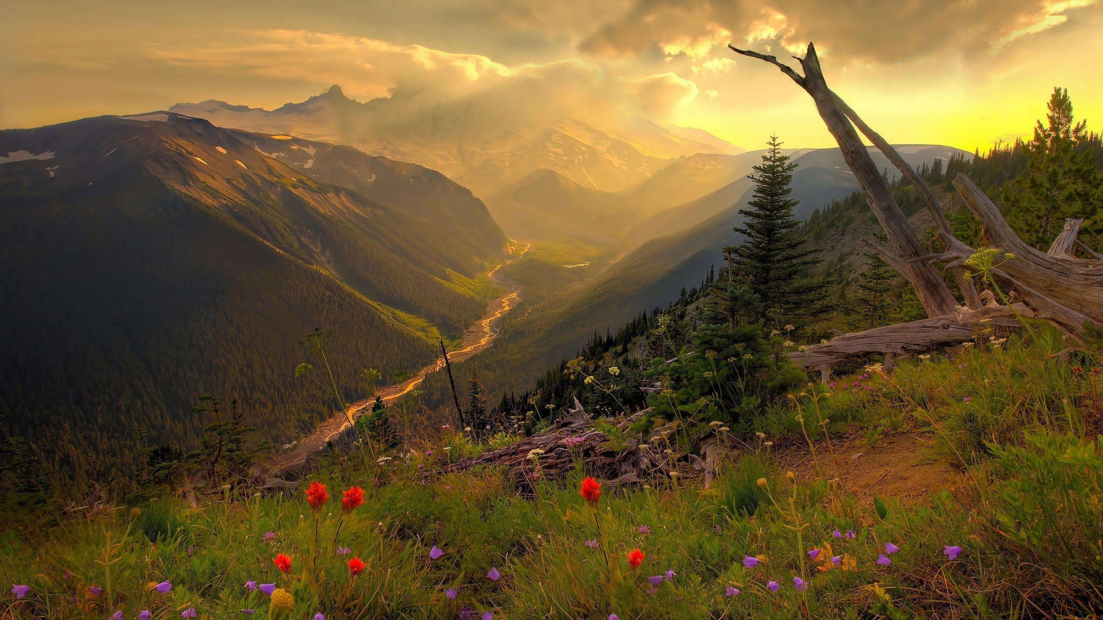 foto de 4K Nature Wallpapers - Top Free 4K Nature Backgrounds ...