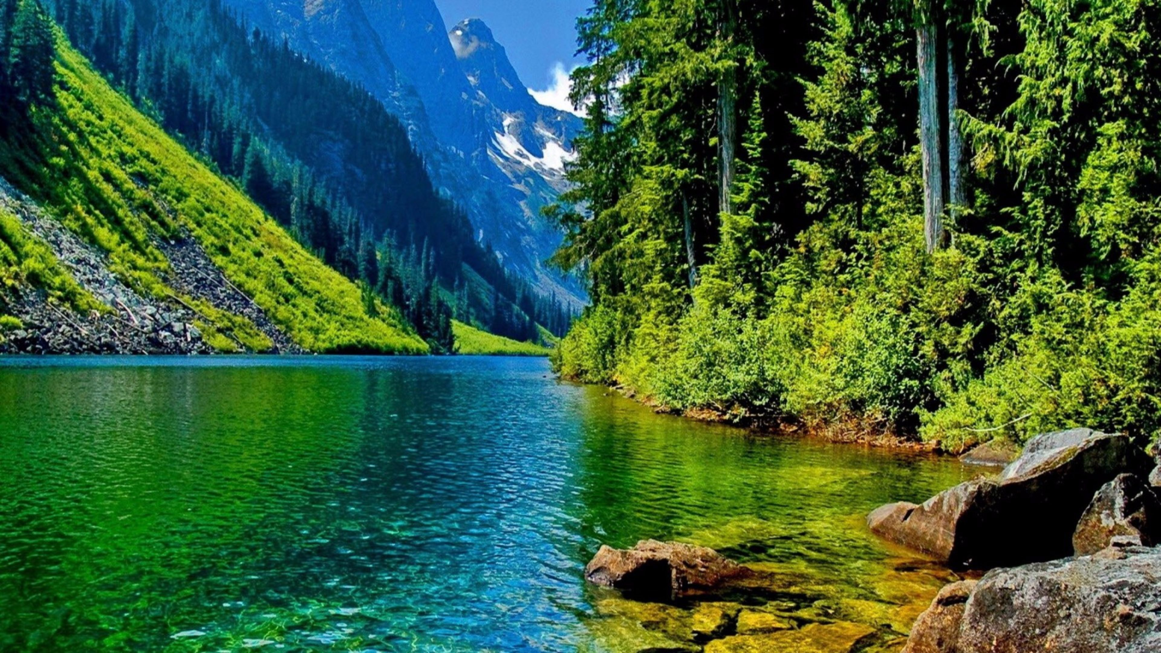 Uhd Nature Wallpapers Top Free Uhd Nature Backgrounds Wallpaperaccess